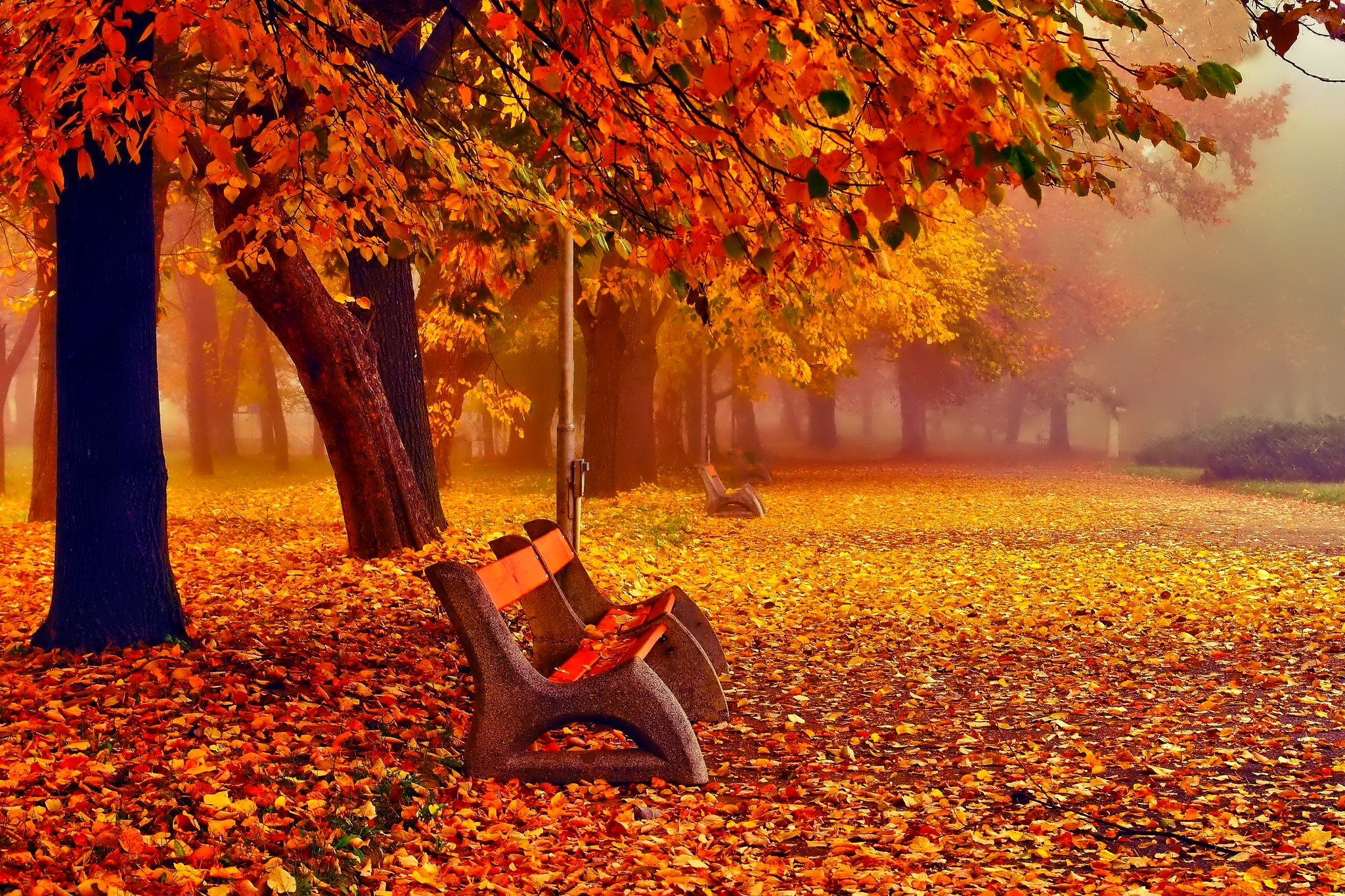 November Wallpaper 1 Download Free Awesome HD Backgrounds For