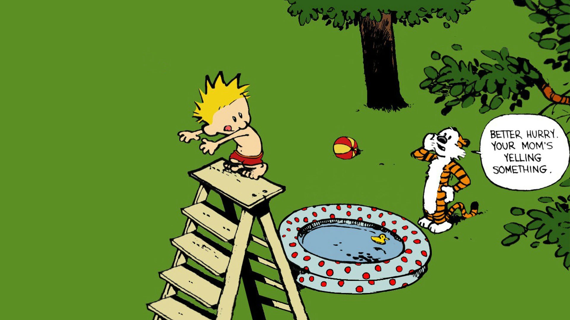 Calvin And Hobbes Wallpaper Download Free Hd Backgrounds For