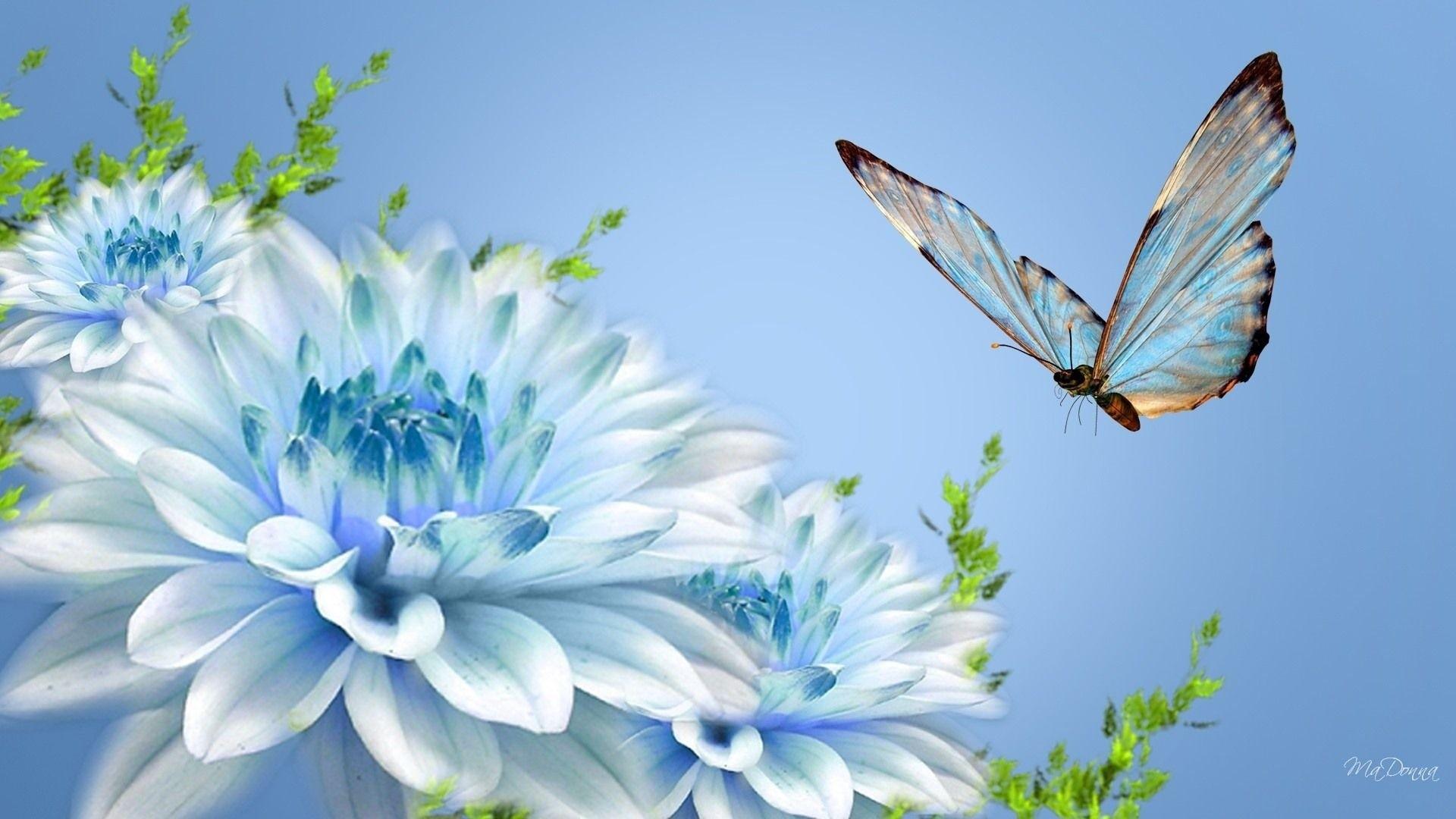 Wallpaper Flowers ·① WallpaperTag