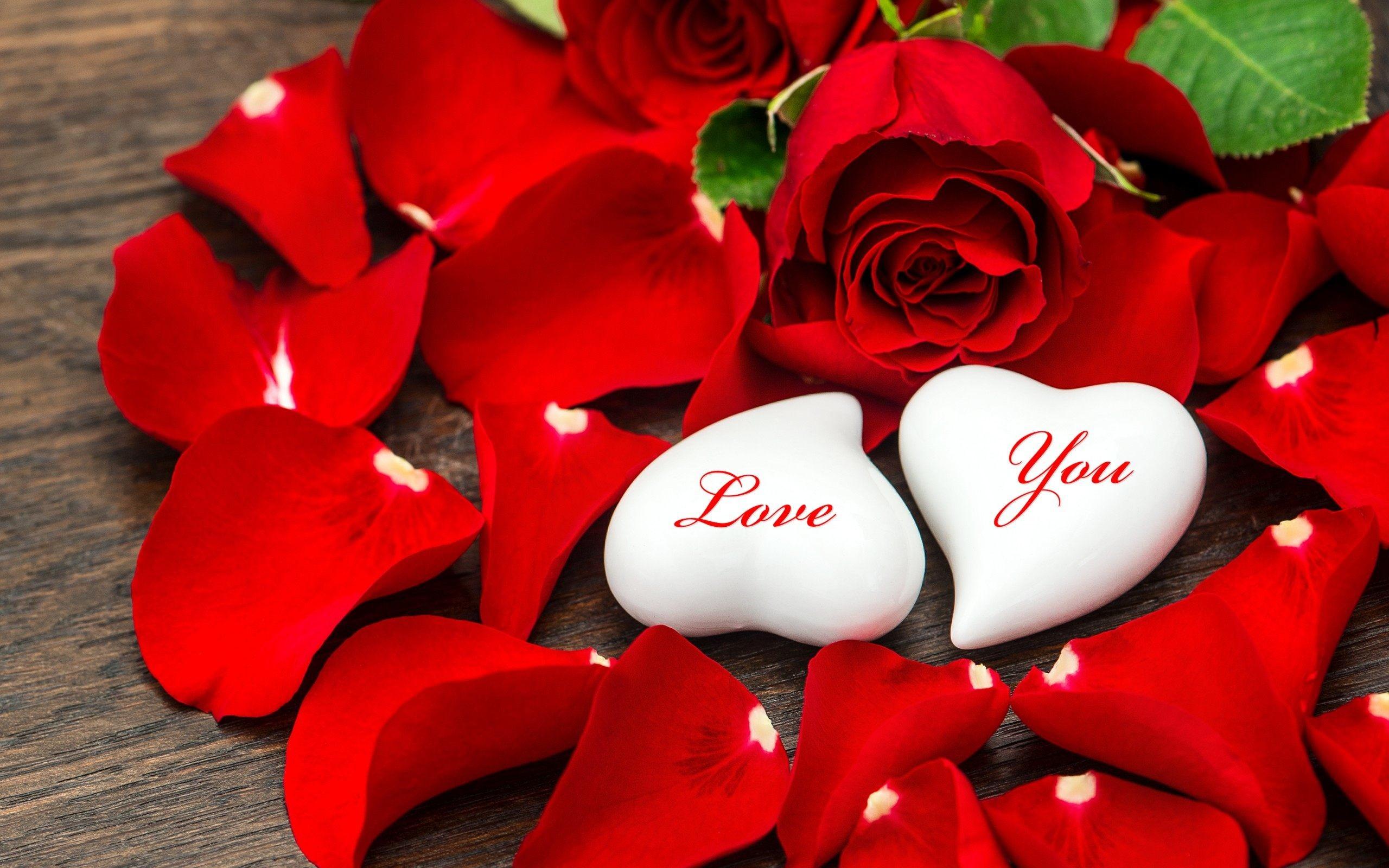 2560x1600 Heart Flowers Hd Download 1920x1080