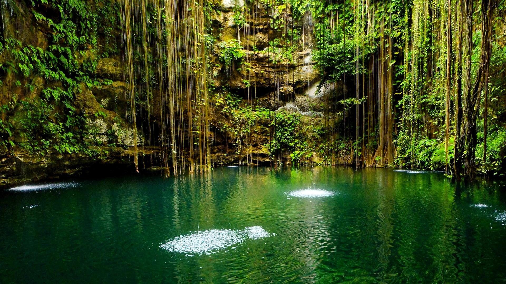 Hd wallpaper nature 1920x1080 - 1920x1080 Beautiful Nature Wallpaper Trees Mexico Yucatan Scenic Lake