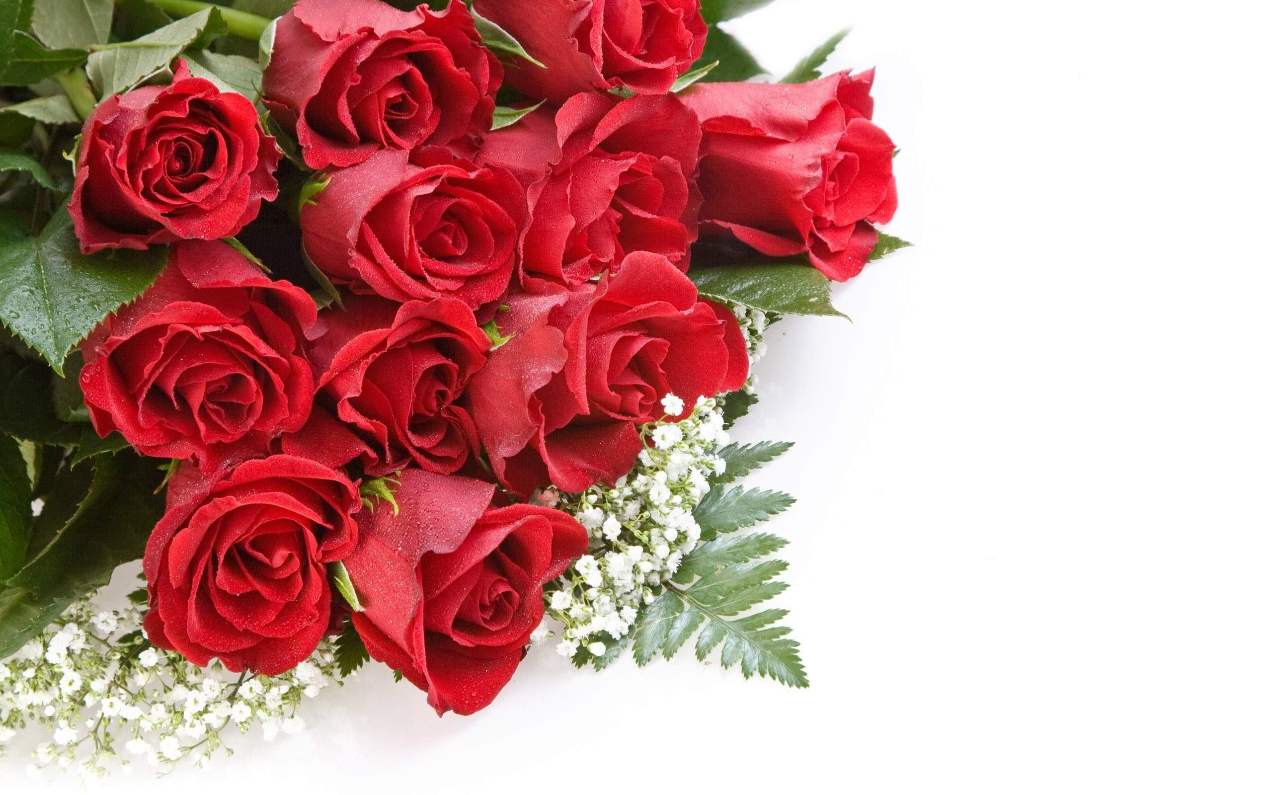 Beautiful roses wallpapers wallpapertag - Beautiful red roses wallpapers desktop ...