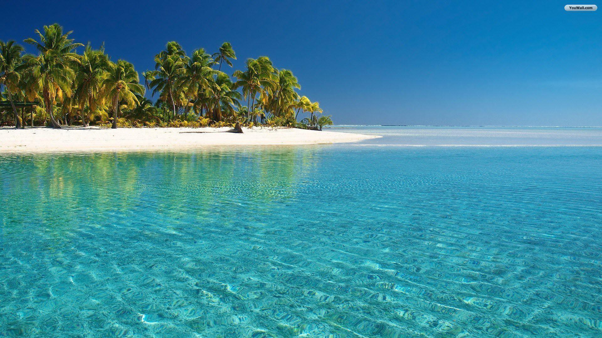tropical beach desktop wallpaper ·①