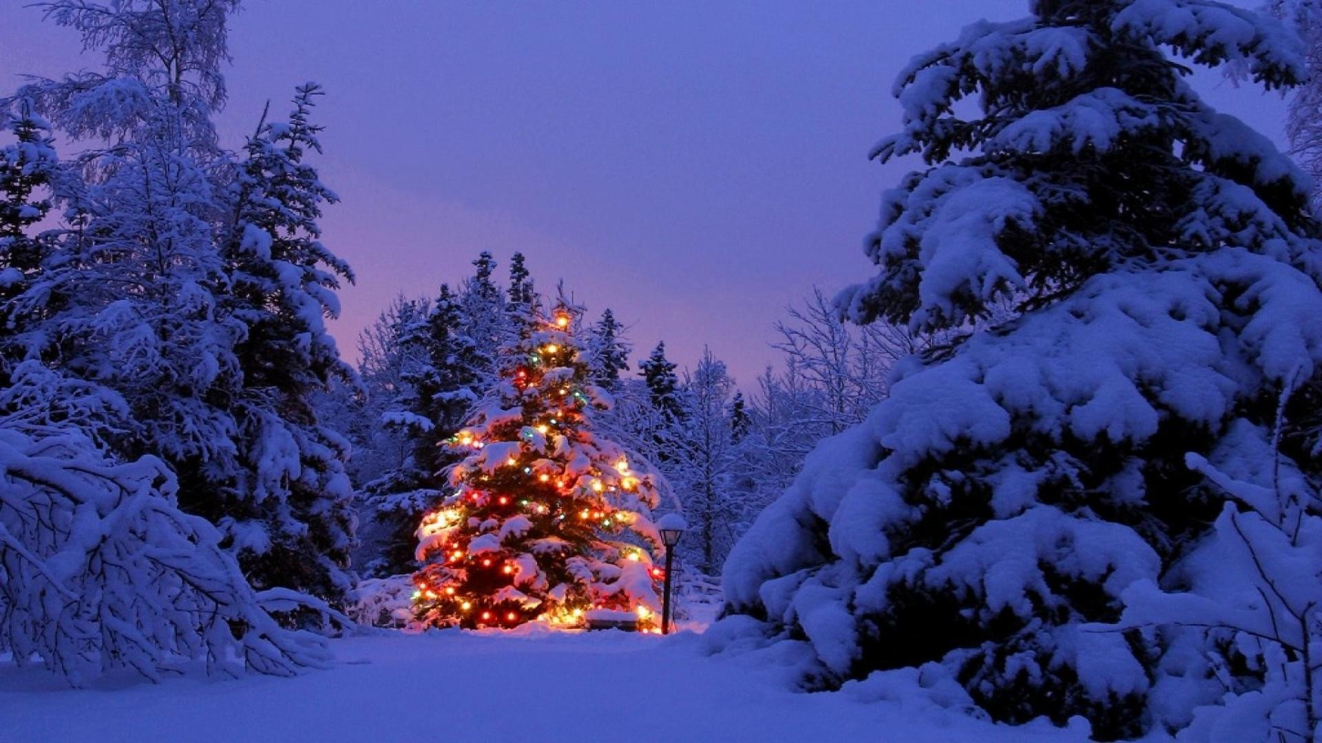 Christmas Scenery Backgrounds ·① WallpaperTag