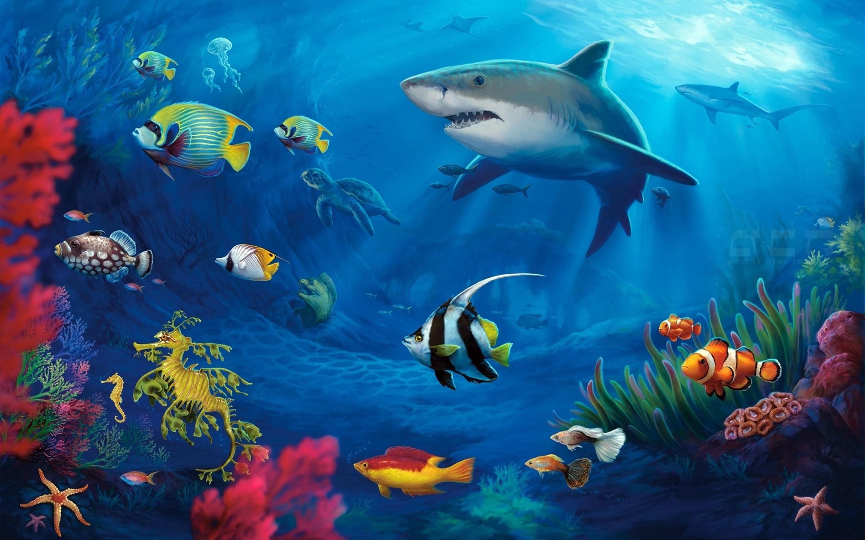 Ocean Scenes Wallpaper 183 ①