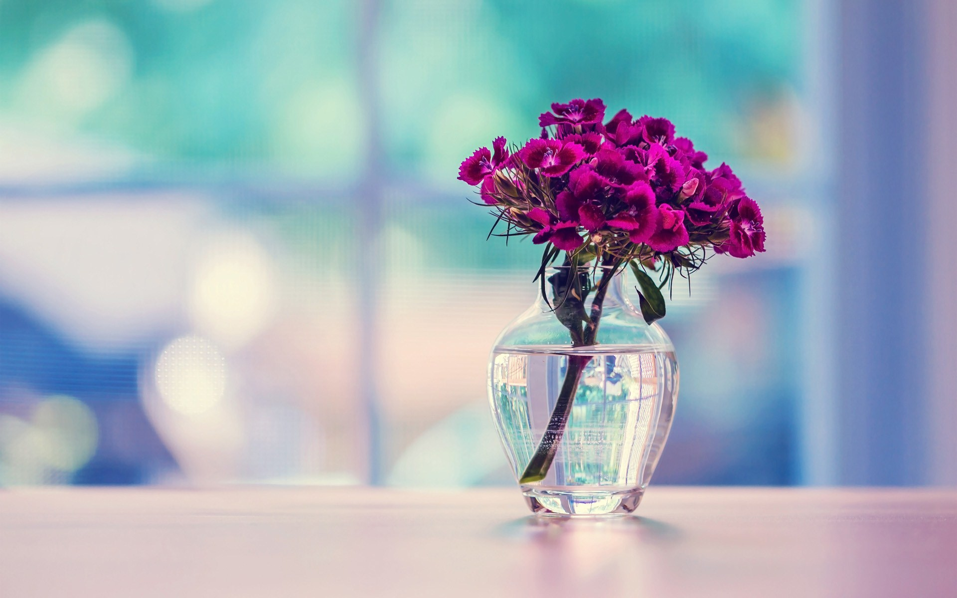 Table Background Download Free Beautiful Hd Backgrounds For