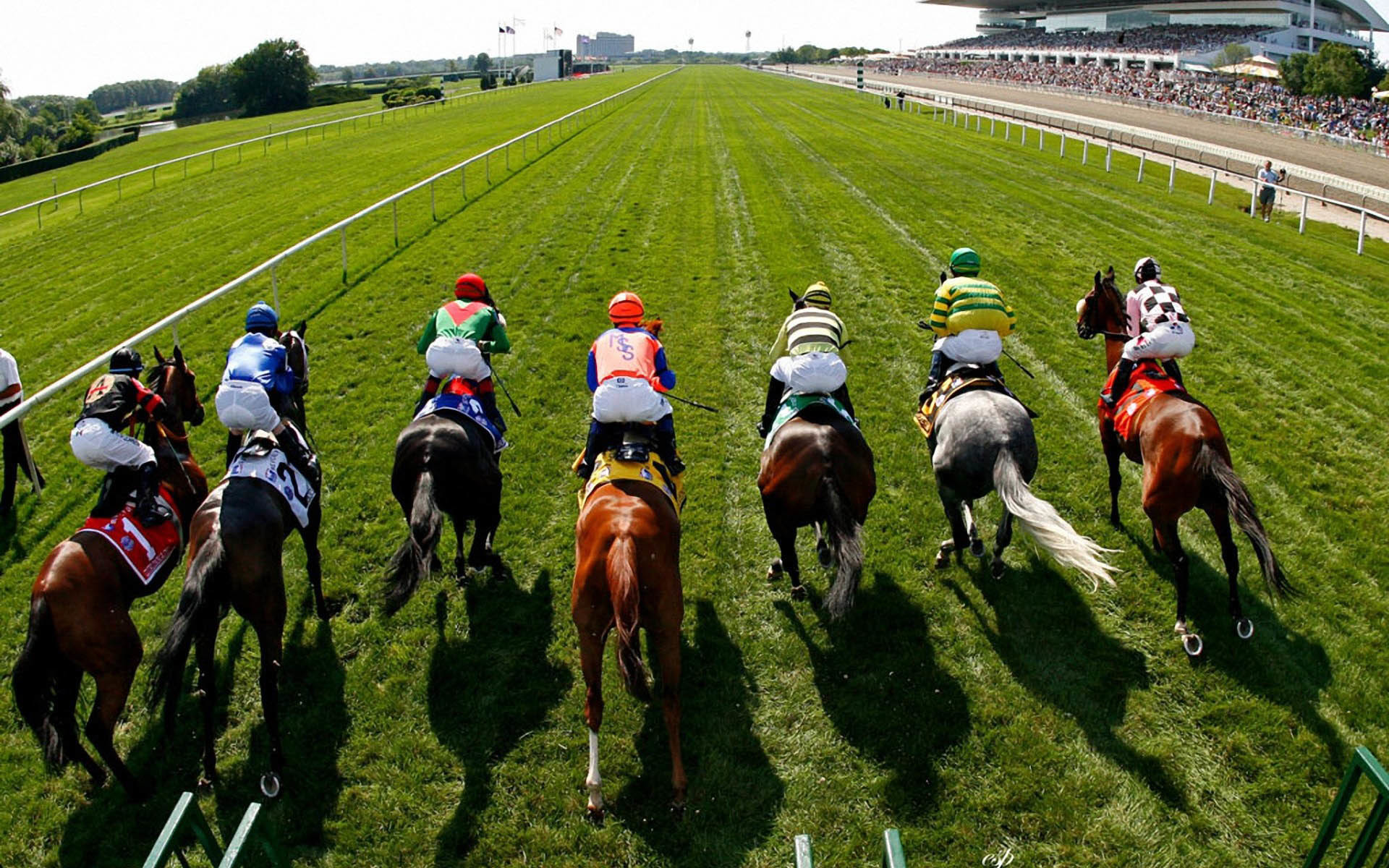 Horse Racing Wallpaper 183 ① Wallpapertag