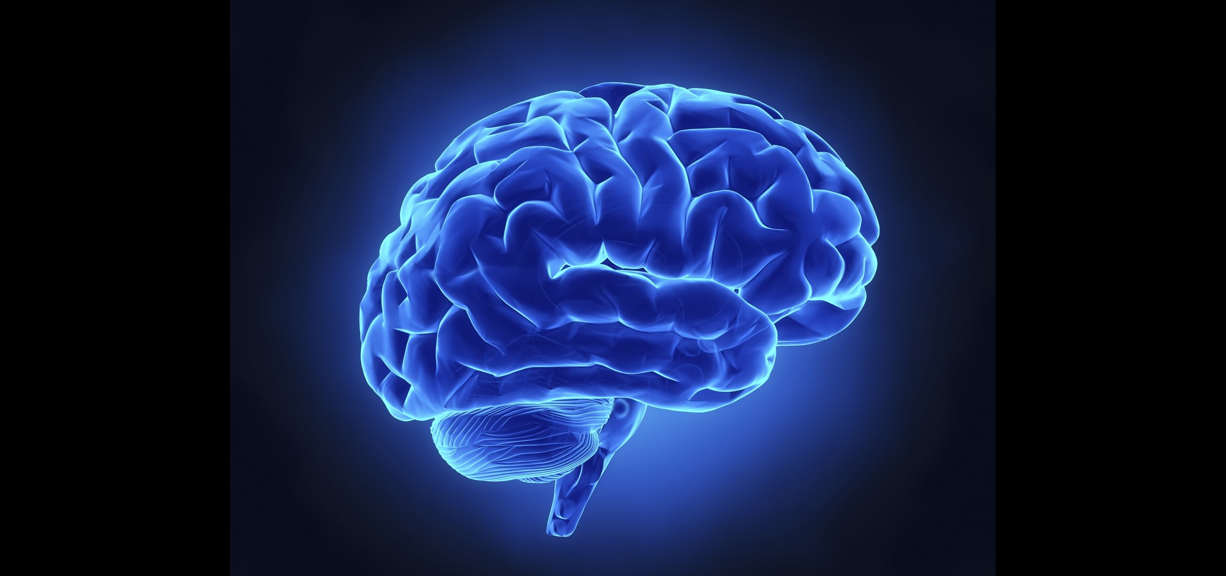 Brain wallpaper download free beautiful backgrounds for - Brain wallpaper 3d ...