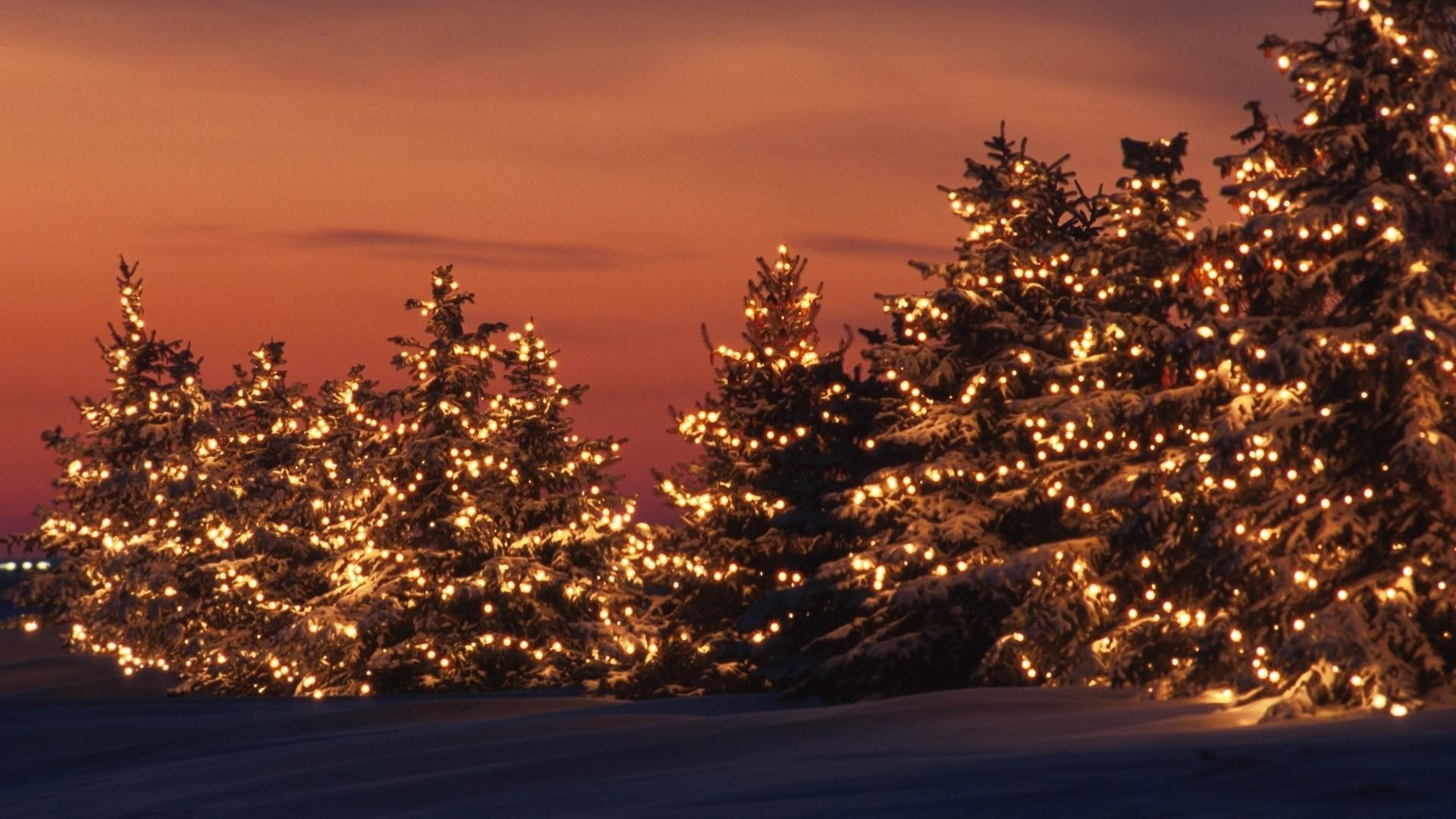 Christmas Lights wallpaper ·① Download free cool full HD