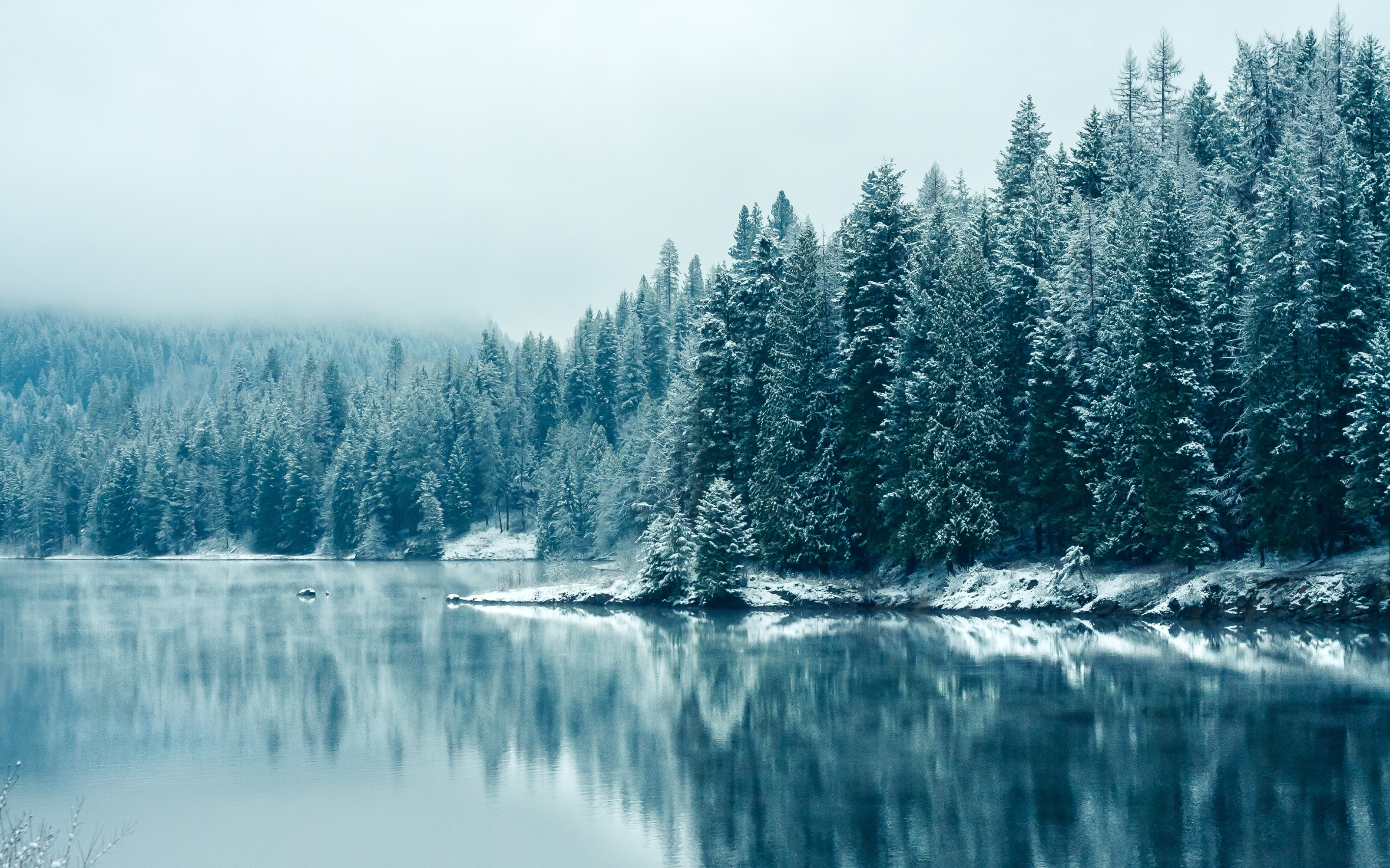 Winter pictures backgrounds winter backgrounds voltagebd Images