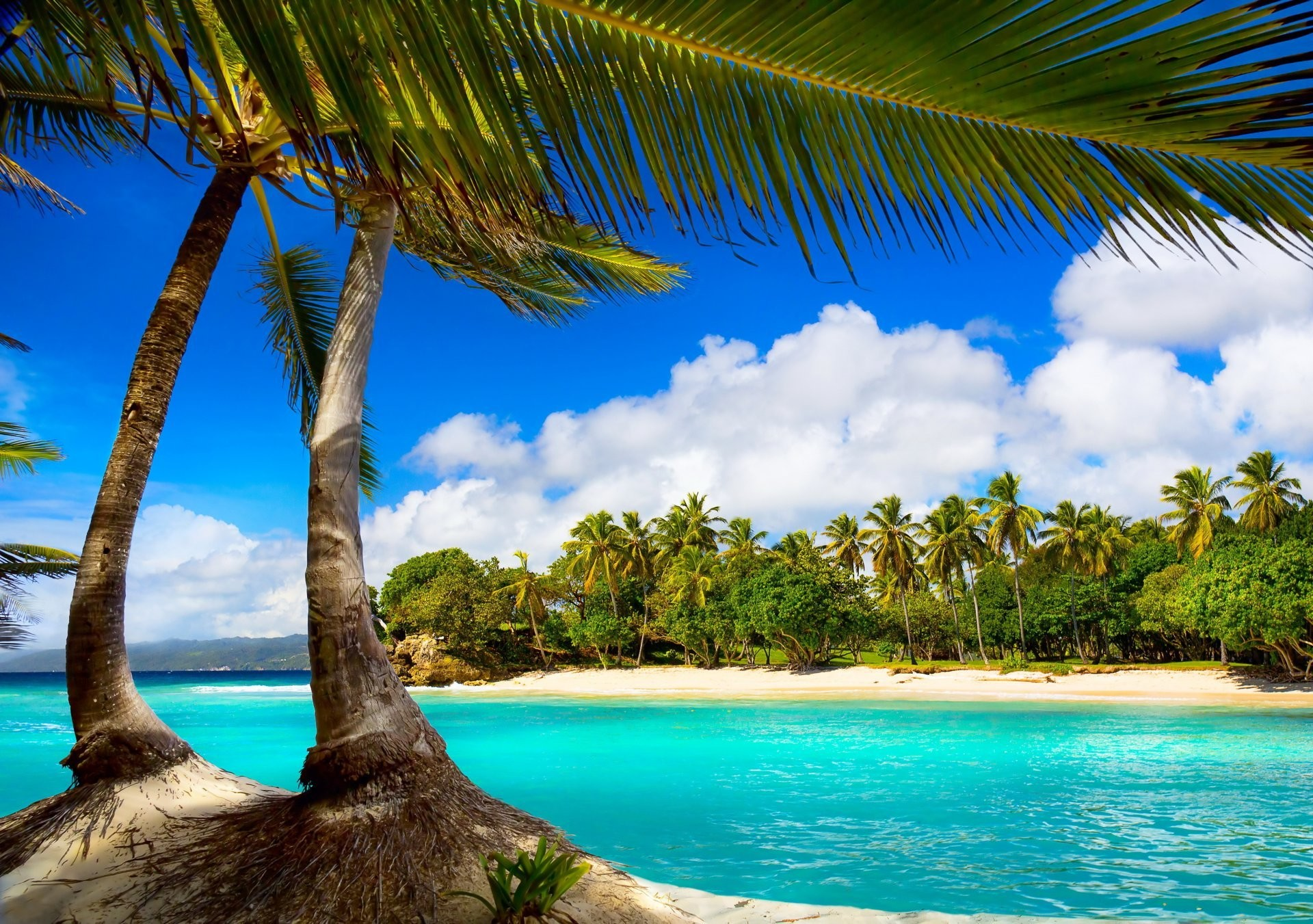 Hd Tropical Island Beach Paradise Wallpapers And Backgrounds: Paradise Beach Wallpaper ·① WallpaperTag