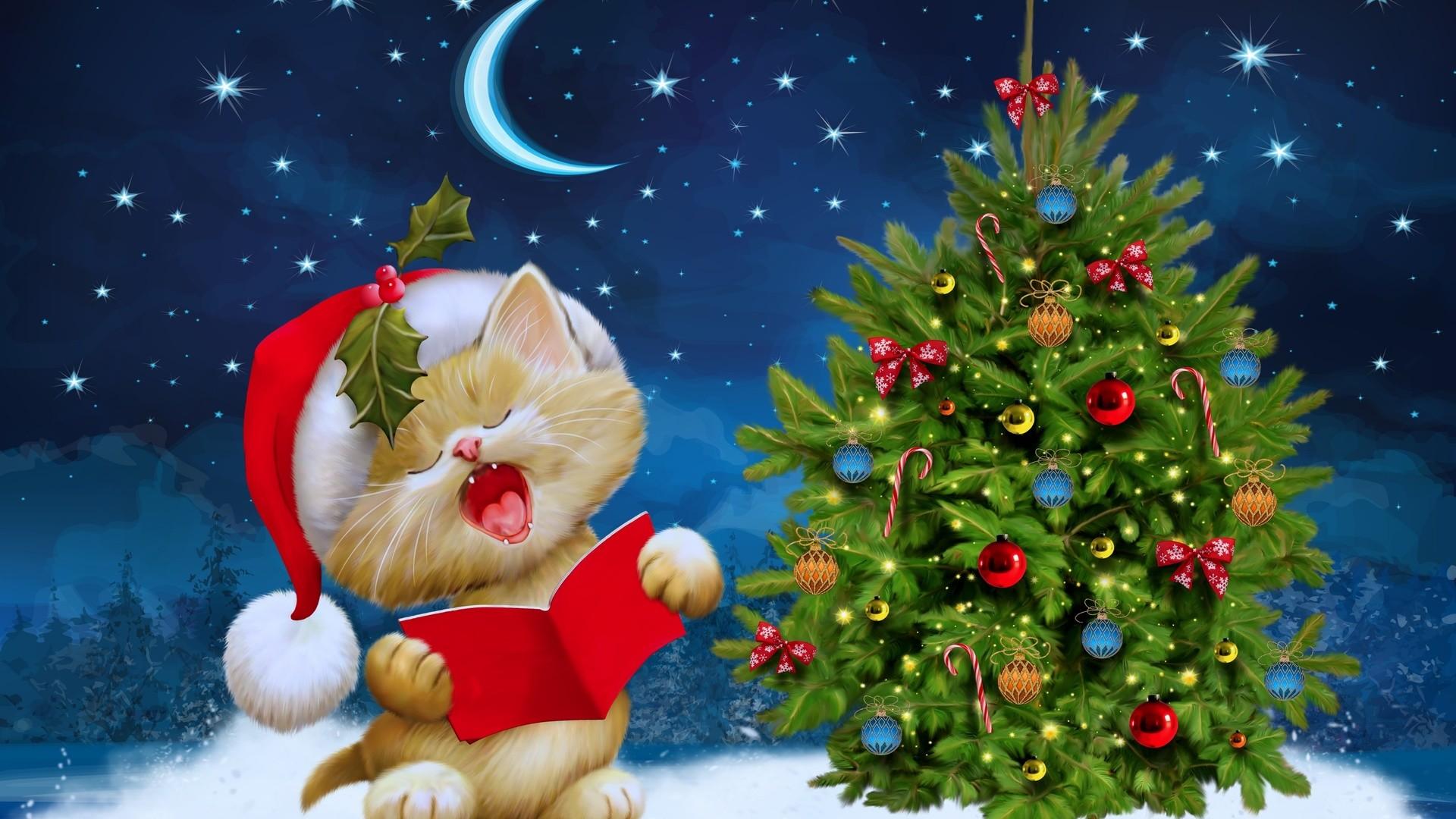 27 Christmas Kitten Wallpaper