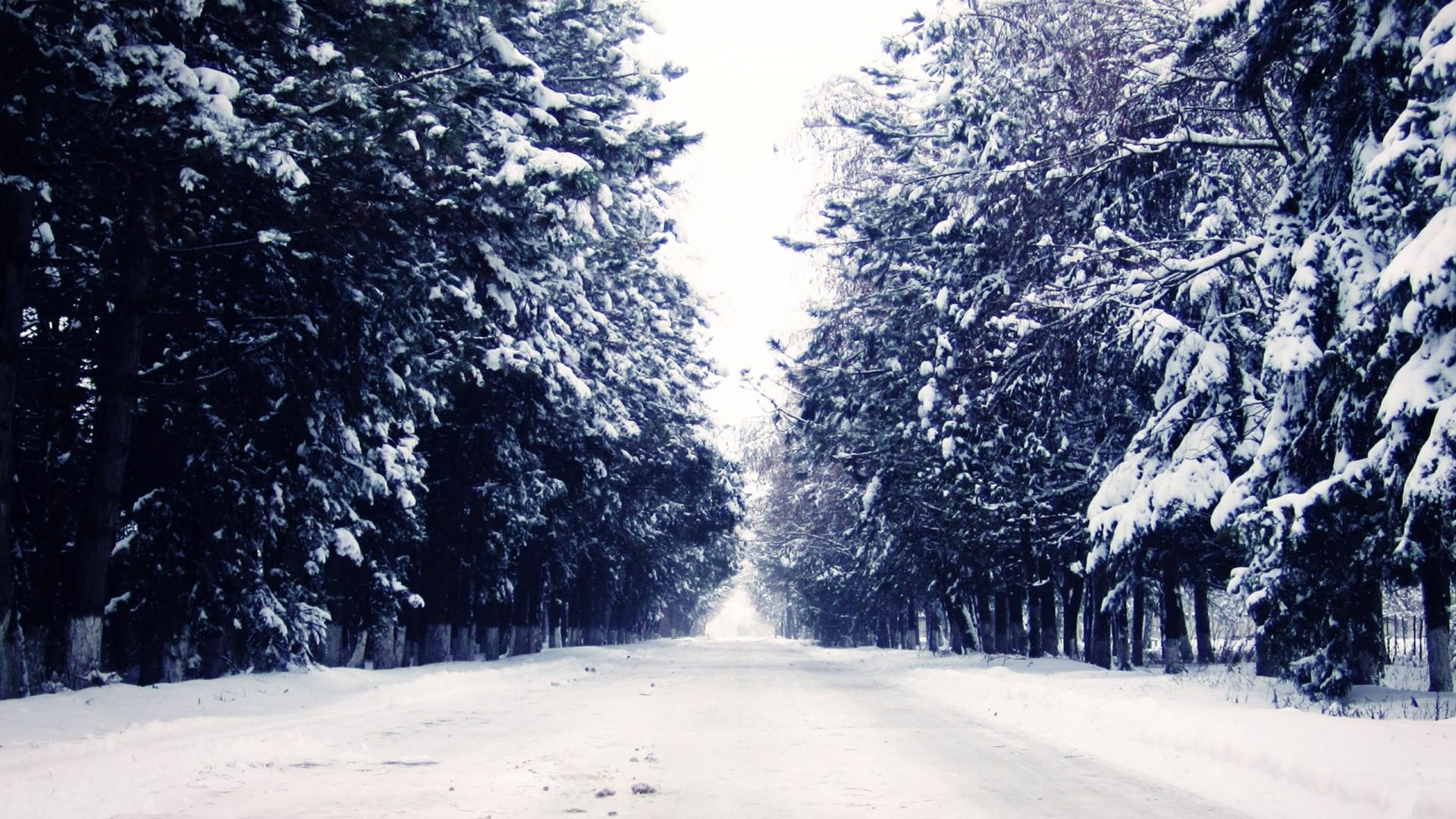 Snow Wallpapers 1920x1080 Full Hd: HD Snow Wallpaper ·①