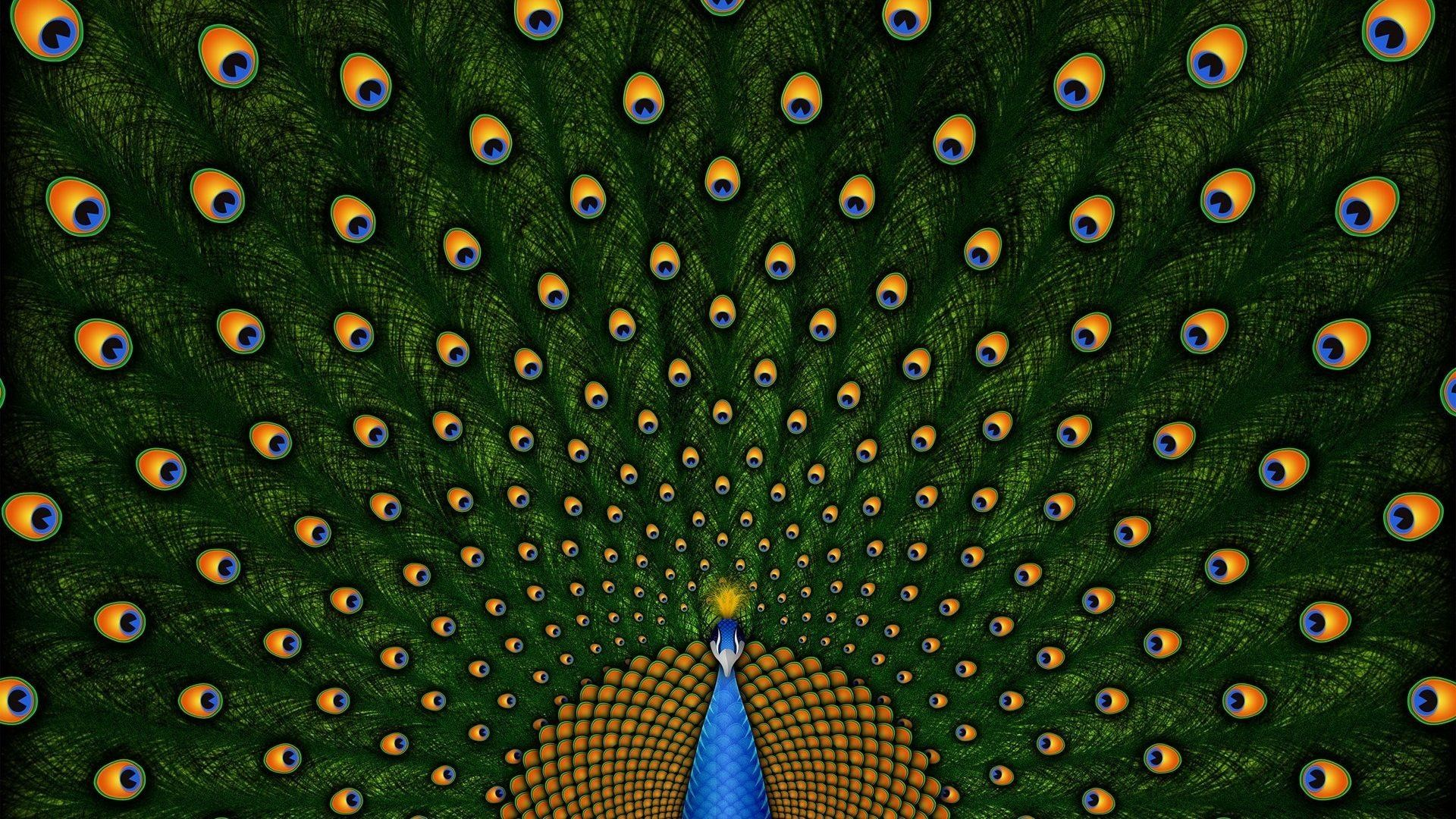 Peacock Art Photography Wallpaper Hq Backgrounds: Wallpapers Of Peacock Feathers HD ·①