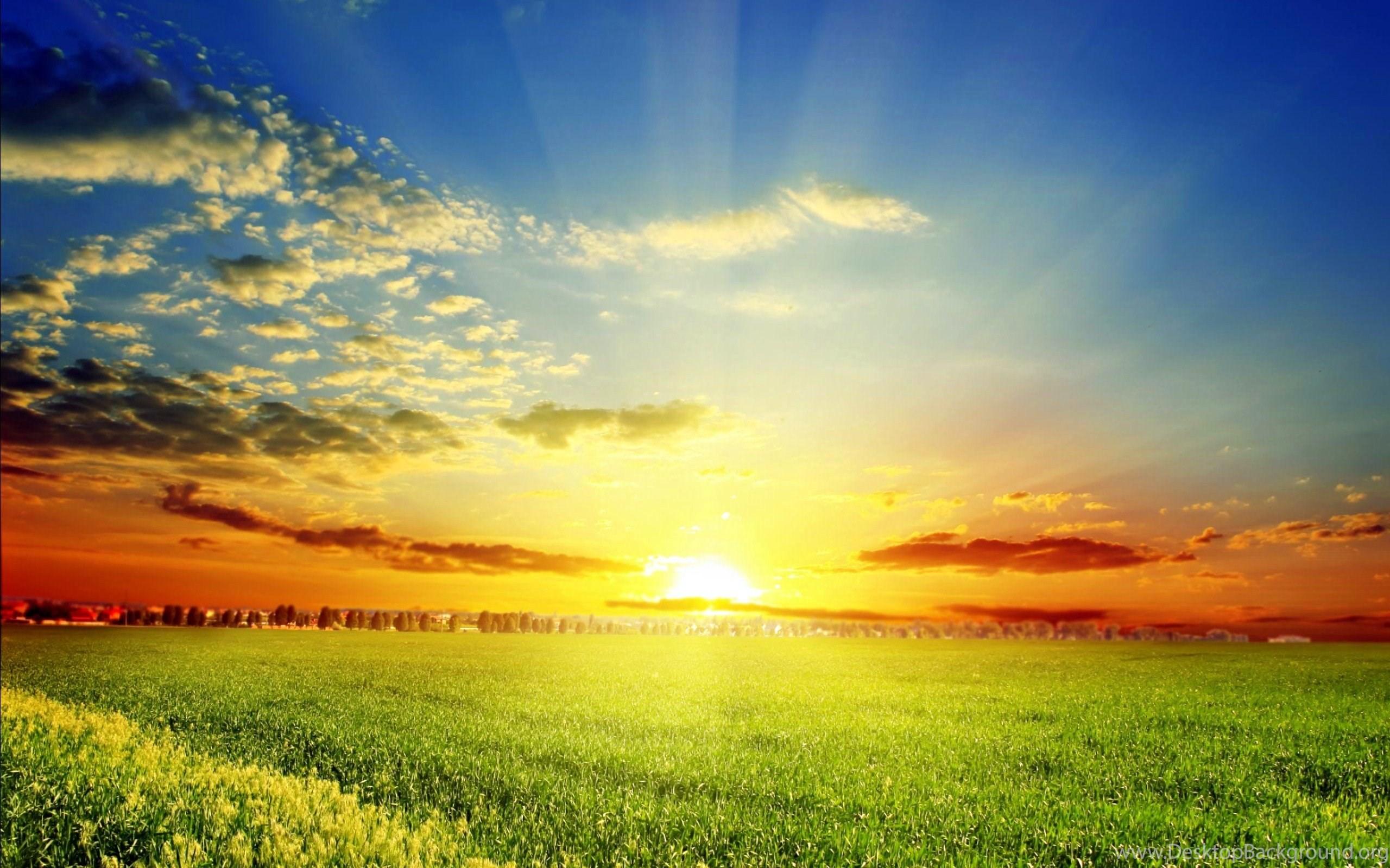 springtime desktop background 183��