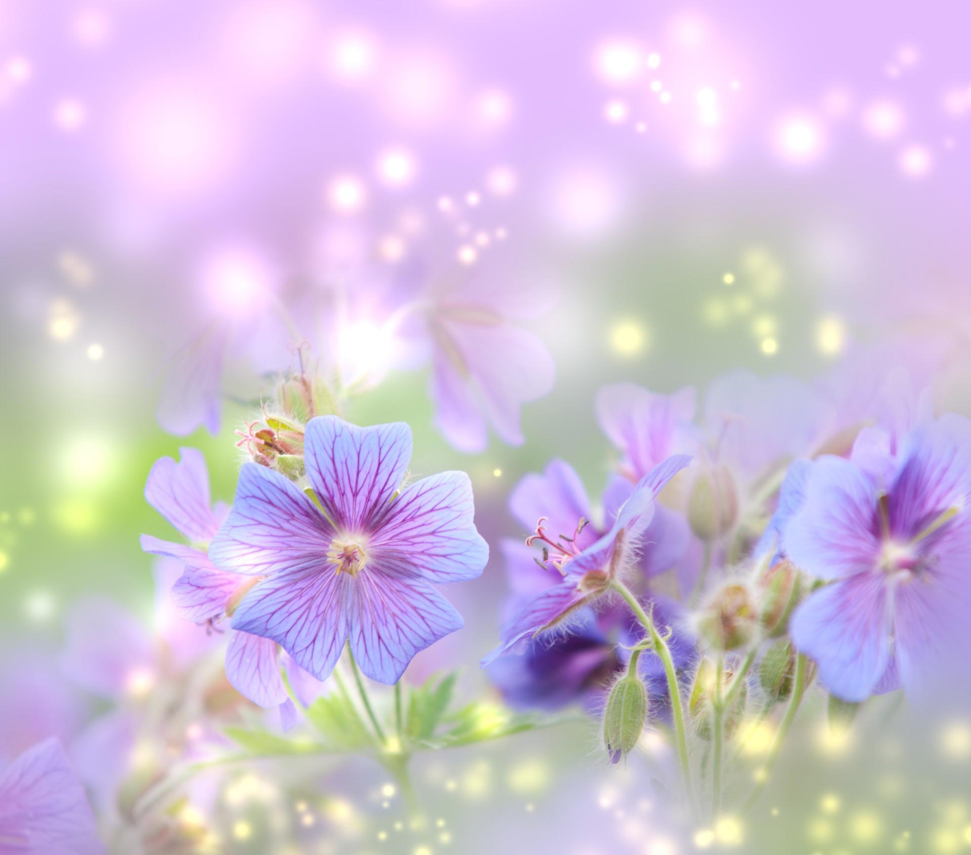 45+ Spring Desktop Backgrounds ·① Download Free Amazing