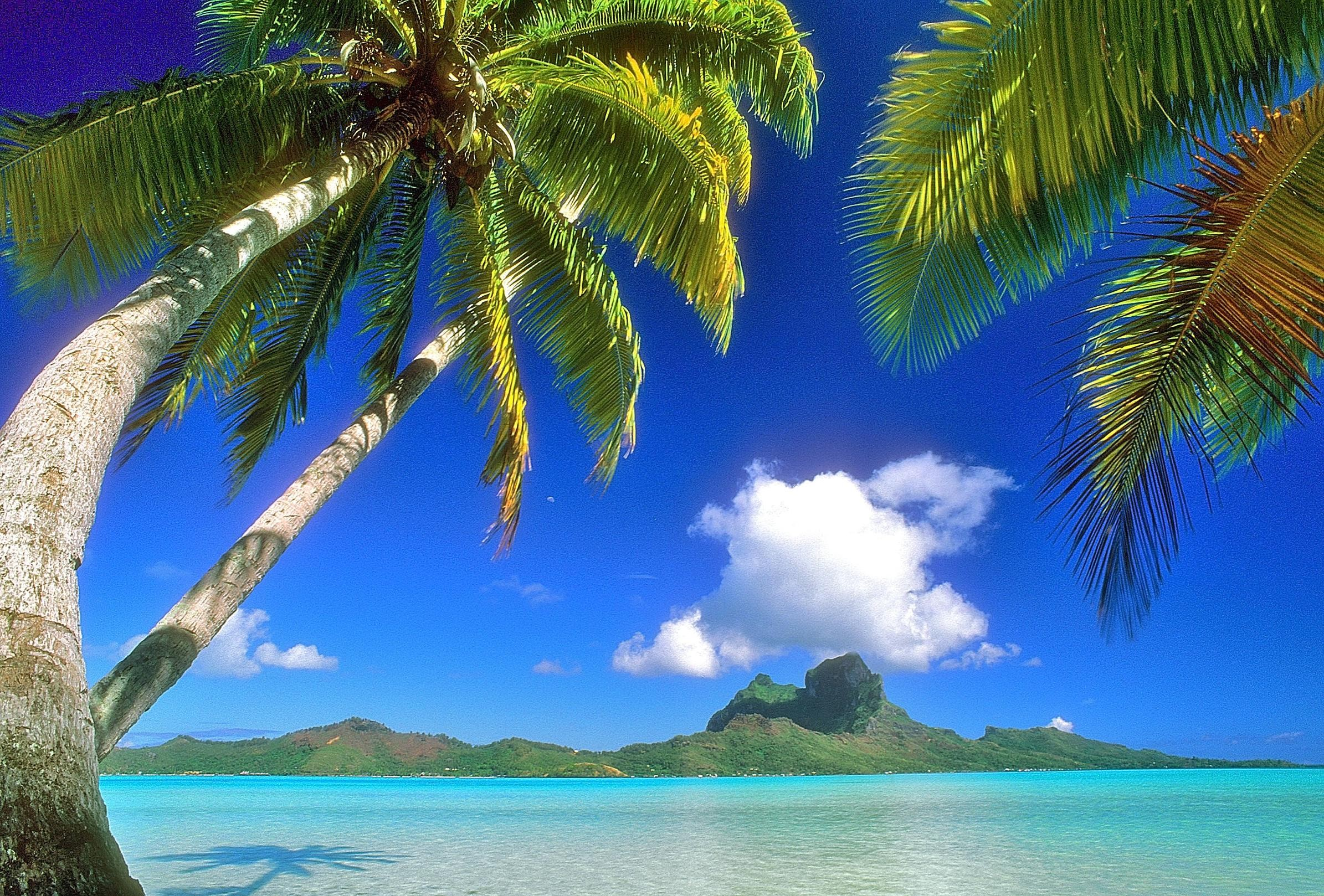 Hawaii Background ·① Download Free Cool Full HD