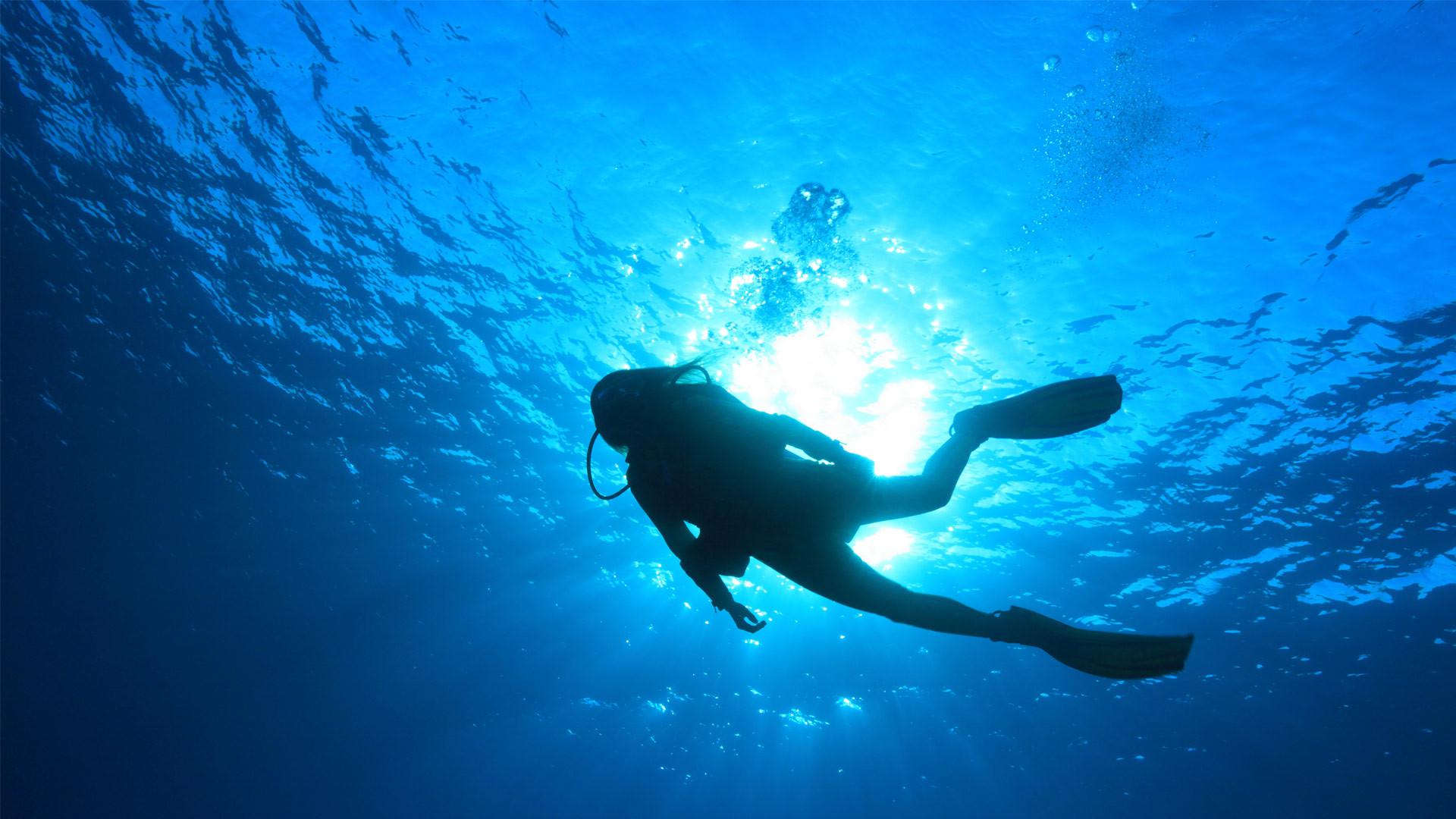 Scuba Diving Wallpaper ·① WallpaperTag