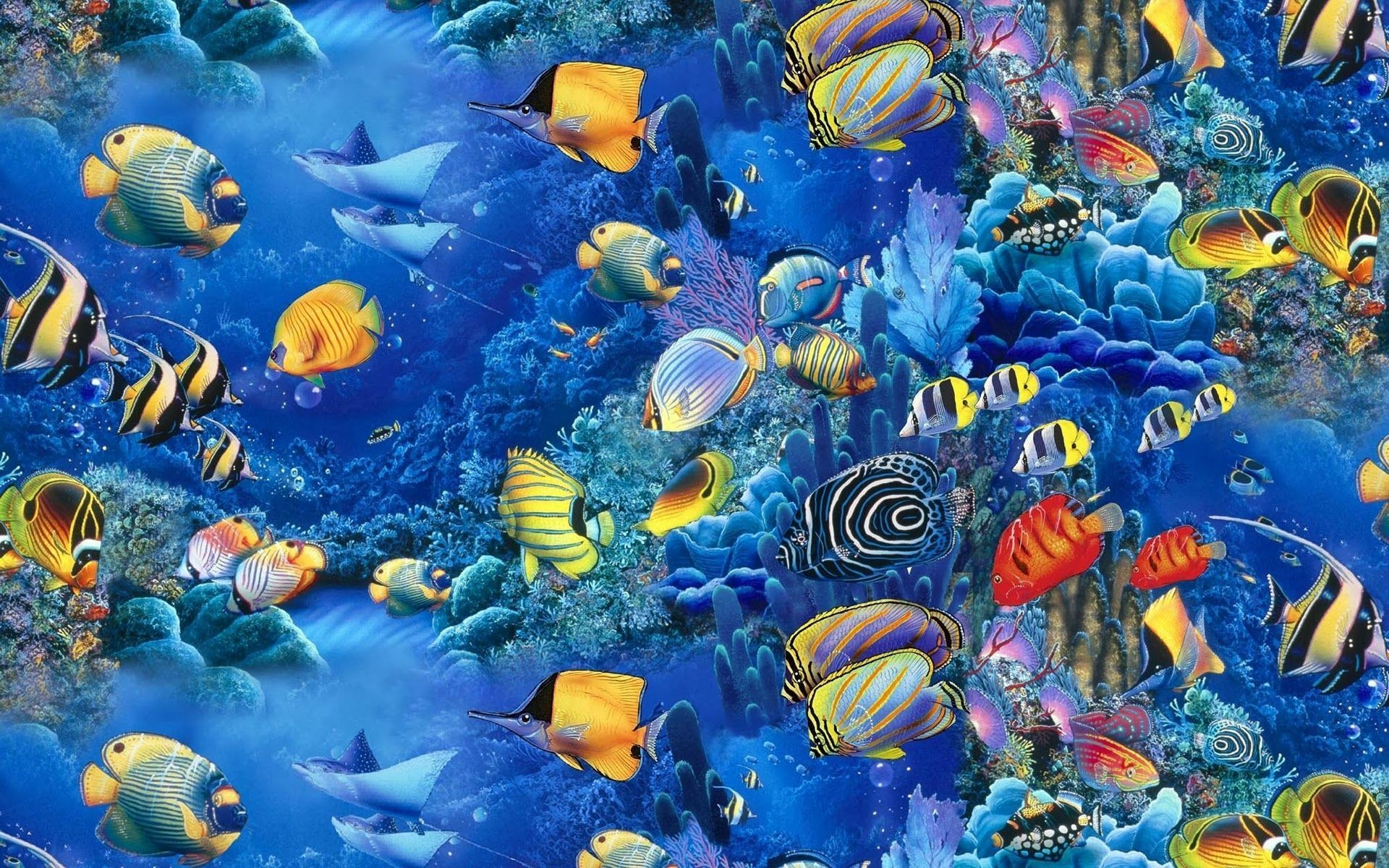 Fish Wallpaper 1920x1200 Pc
