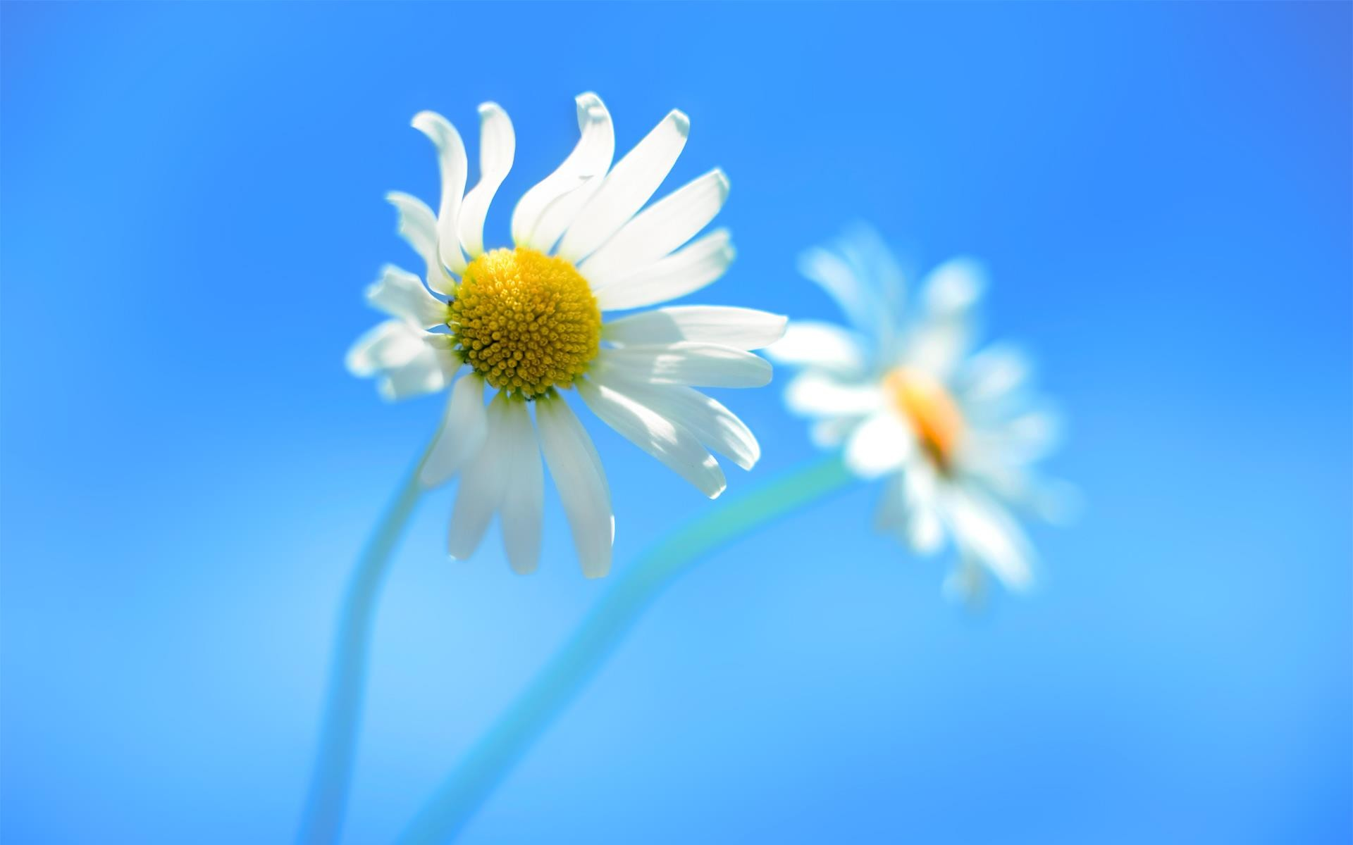 64+ Windows desktop backgrounds ·① Download free awesome