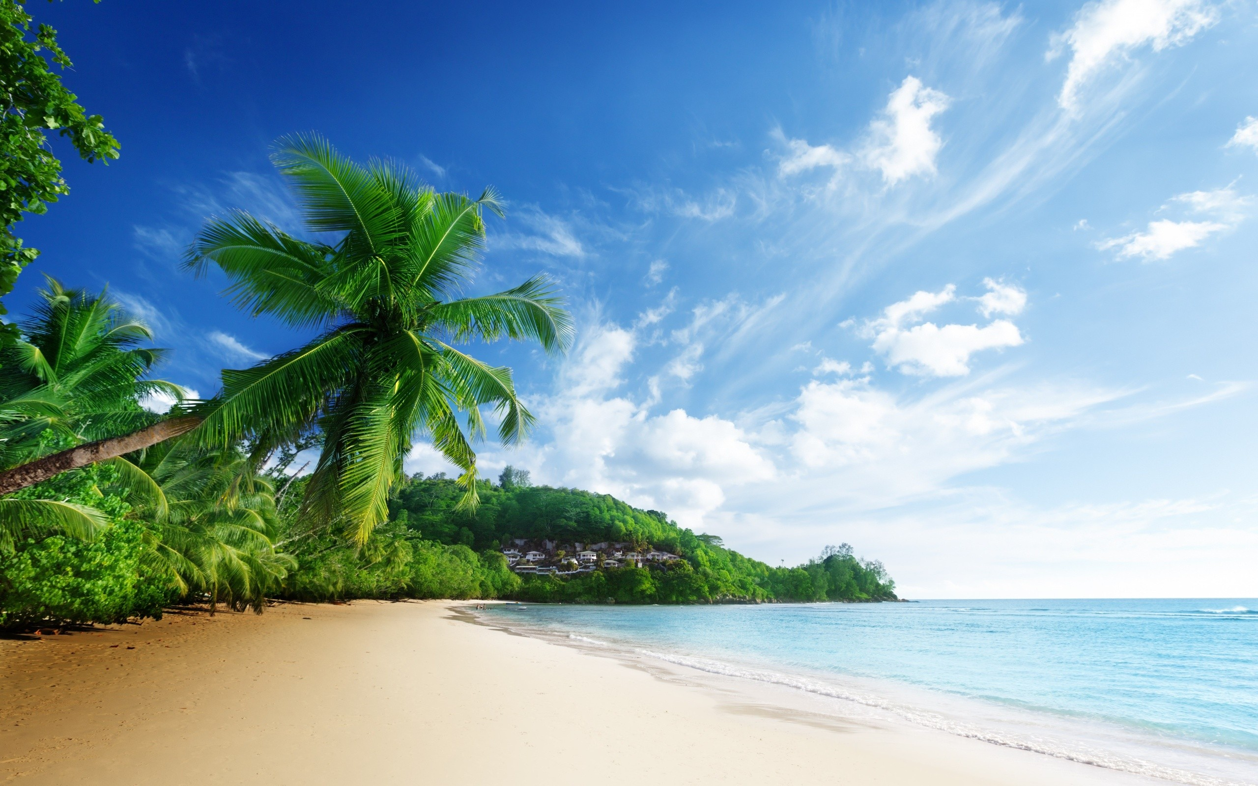 46+ beach wallpapers ·① download free stunning full hd backgrounds