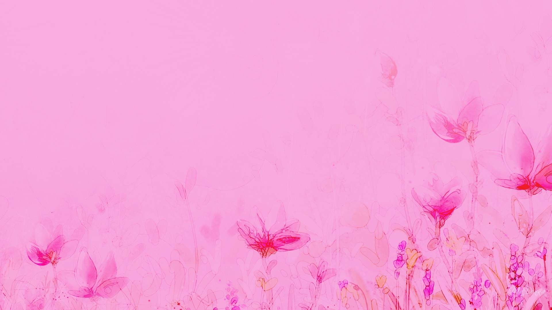 baby pink background - HD1920×1080