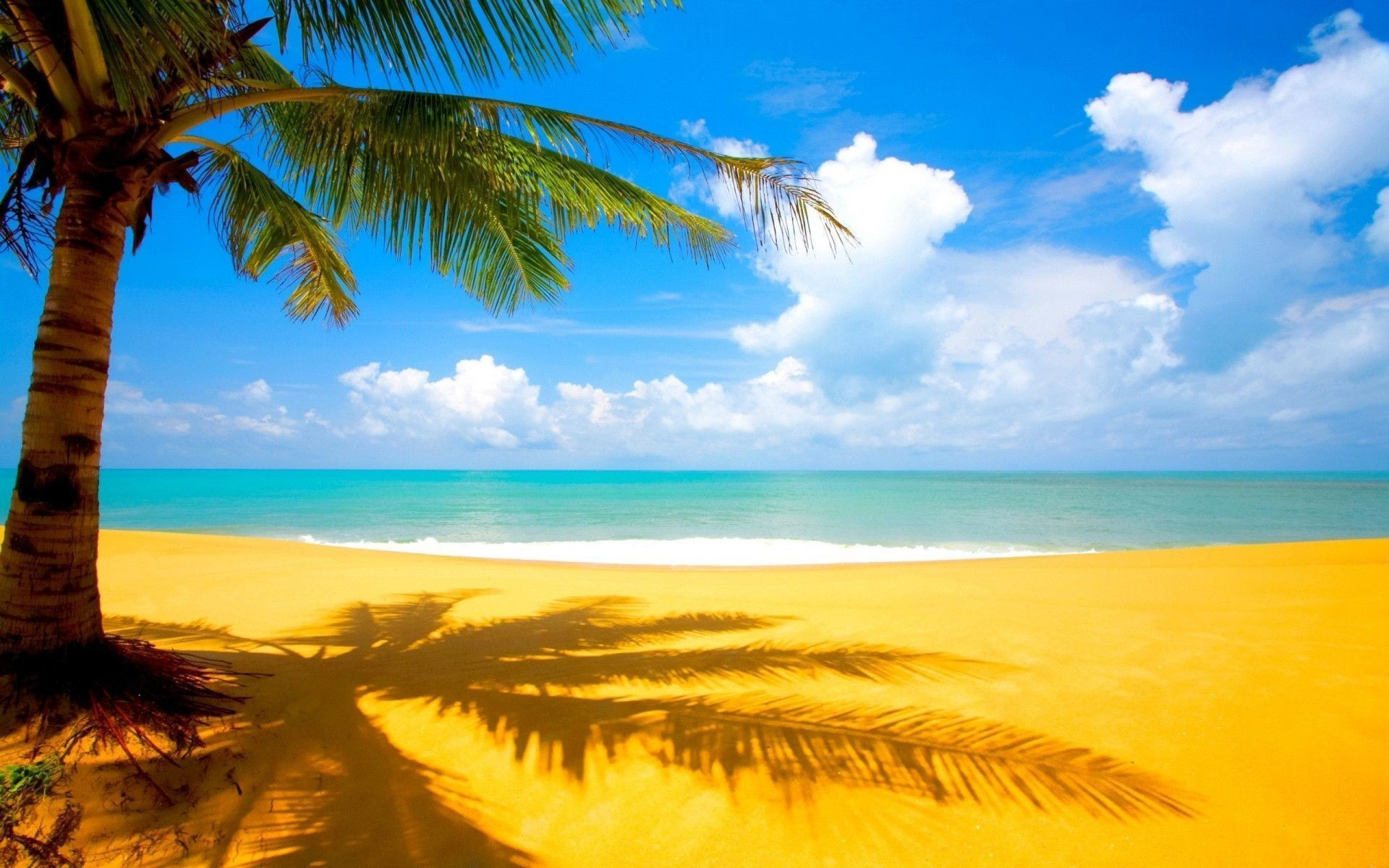 Hawaiian Background 1 Download Free Stunning HD Wallpapers For
