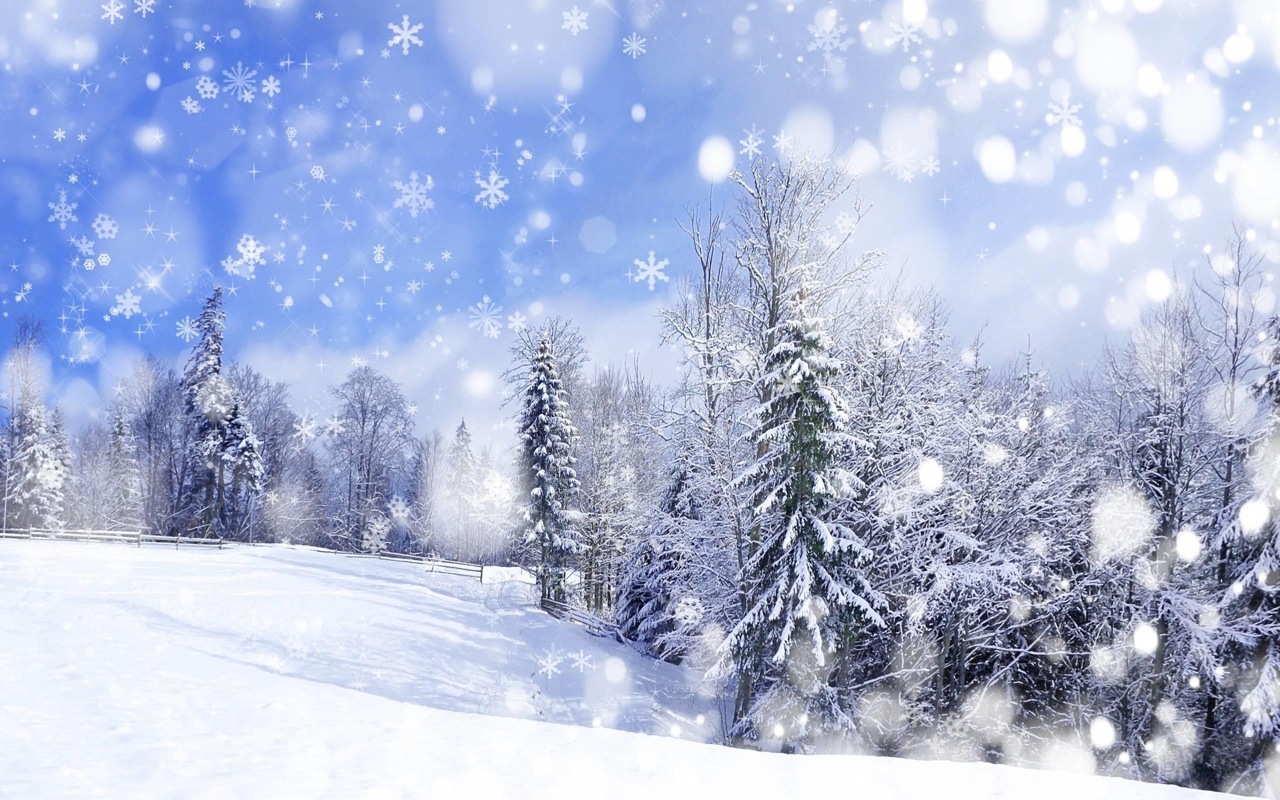 Winter Scene Wallpaper ·①
