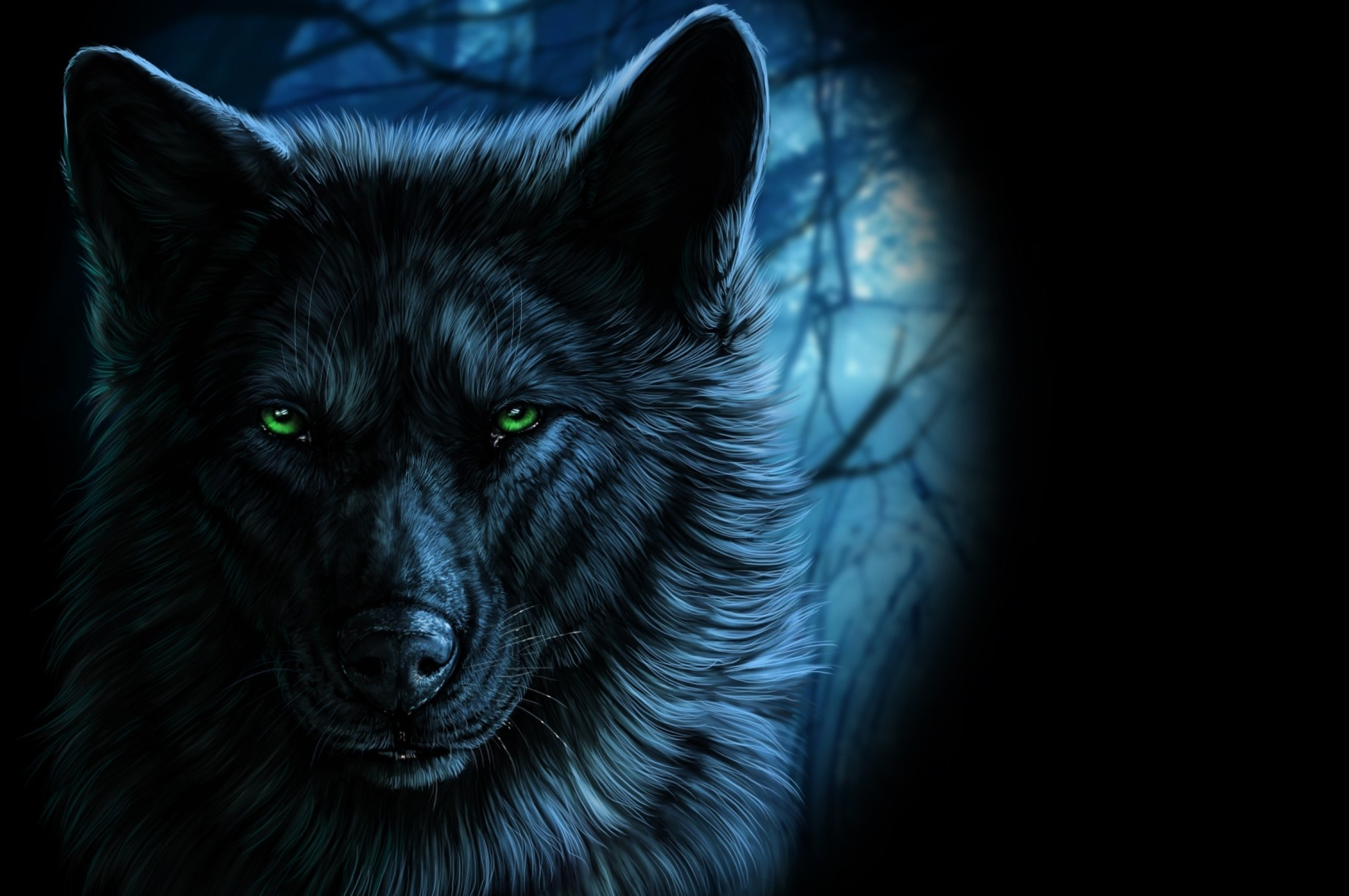 Majestic Wolf Wallpaper ·① WallpaperTag