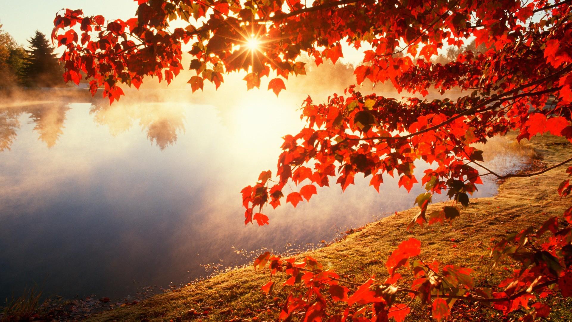 Beautiful Fall Desktop Backgrounds 1920x1080 Hd