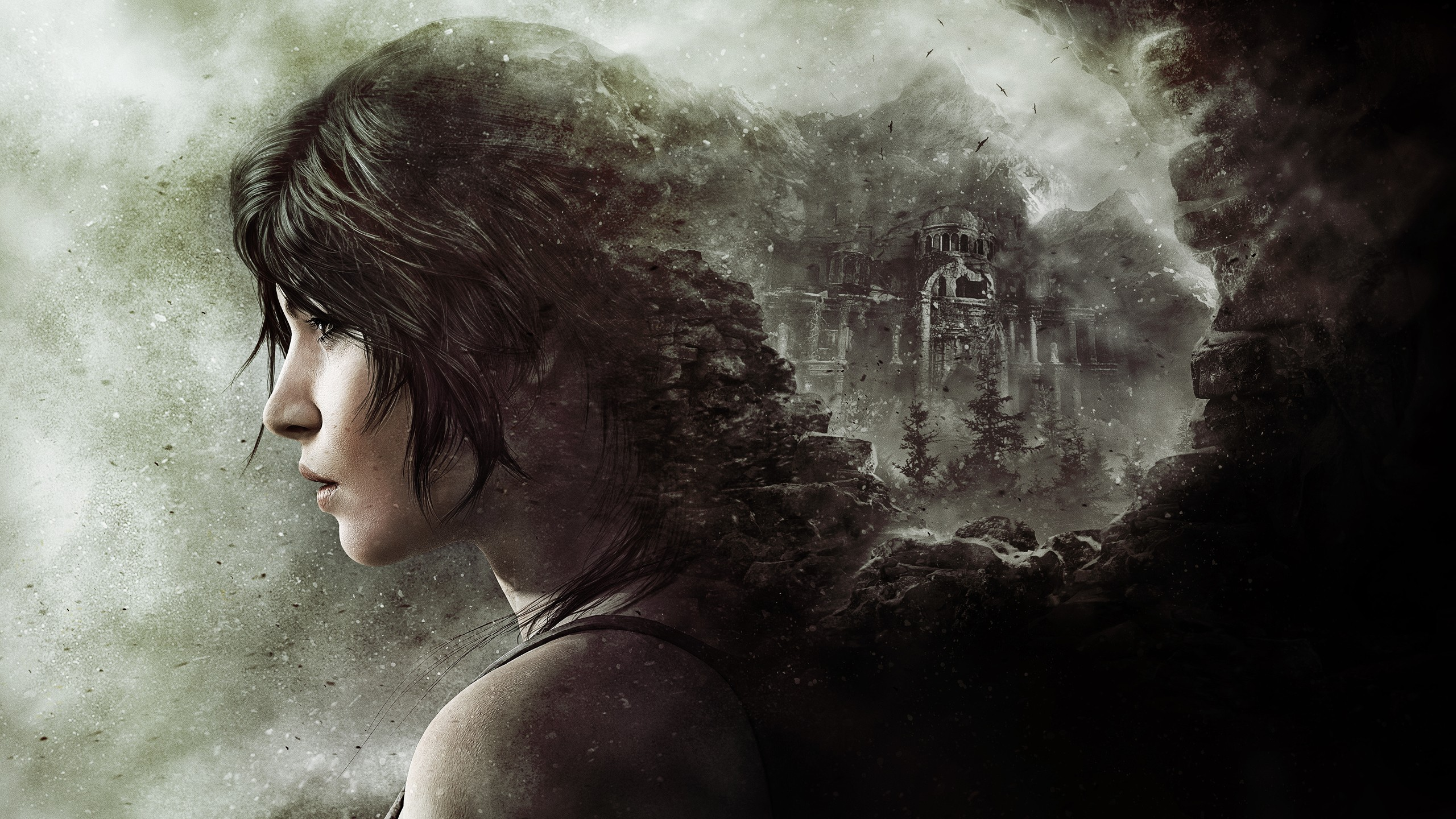 Rise Of The Tomb Raider Wallpaper Download Free Awesome High