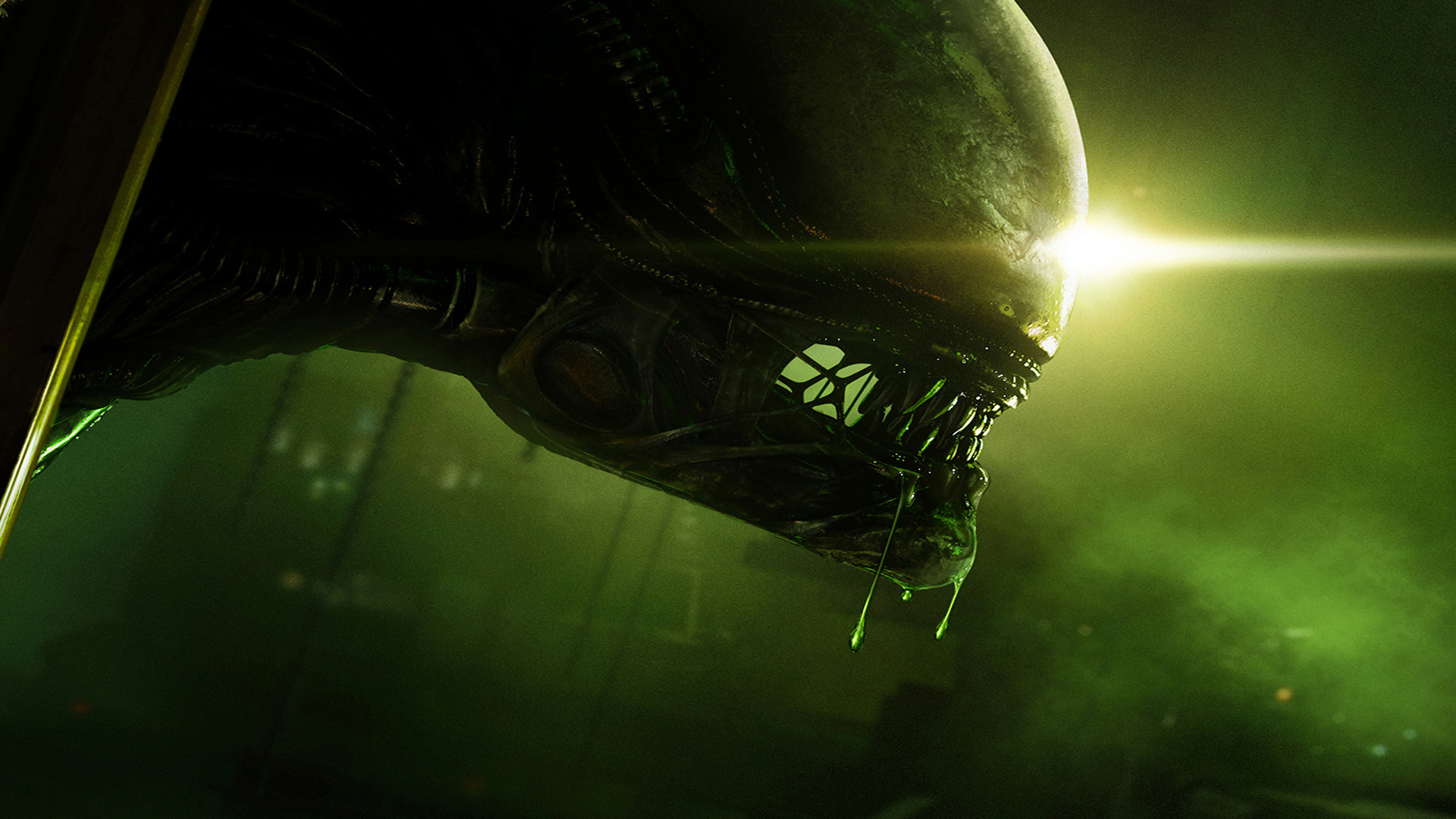 green alien wallpaper