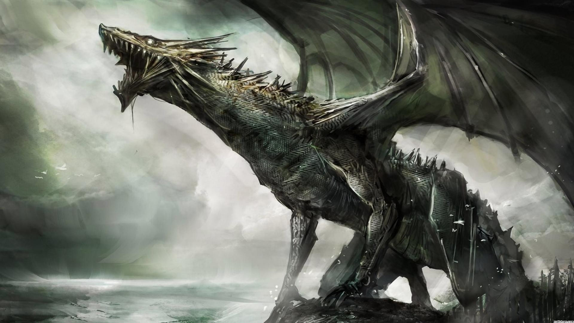 cool dragon backgrounds