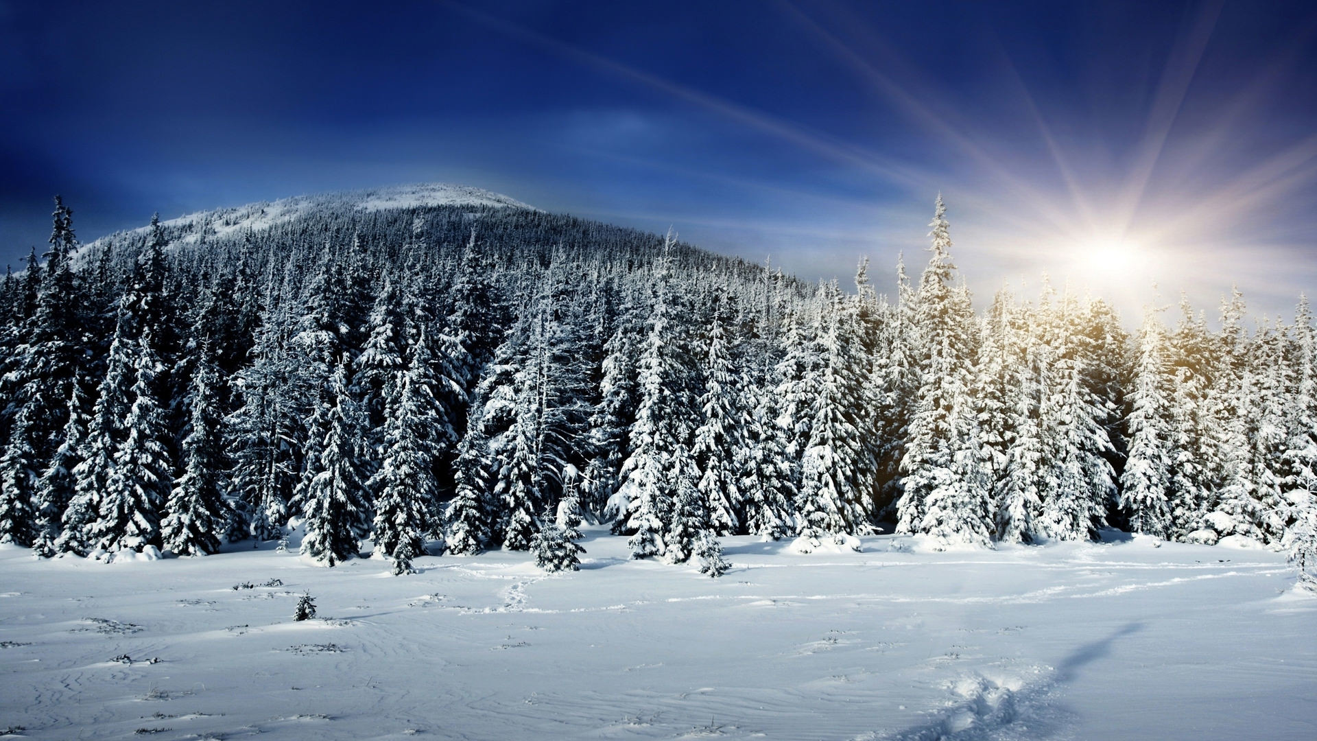 Beautiful snow wallpapers - Snowy wallpaper ...