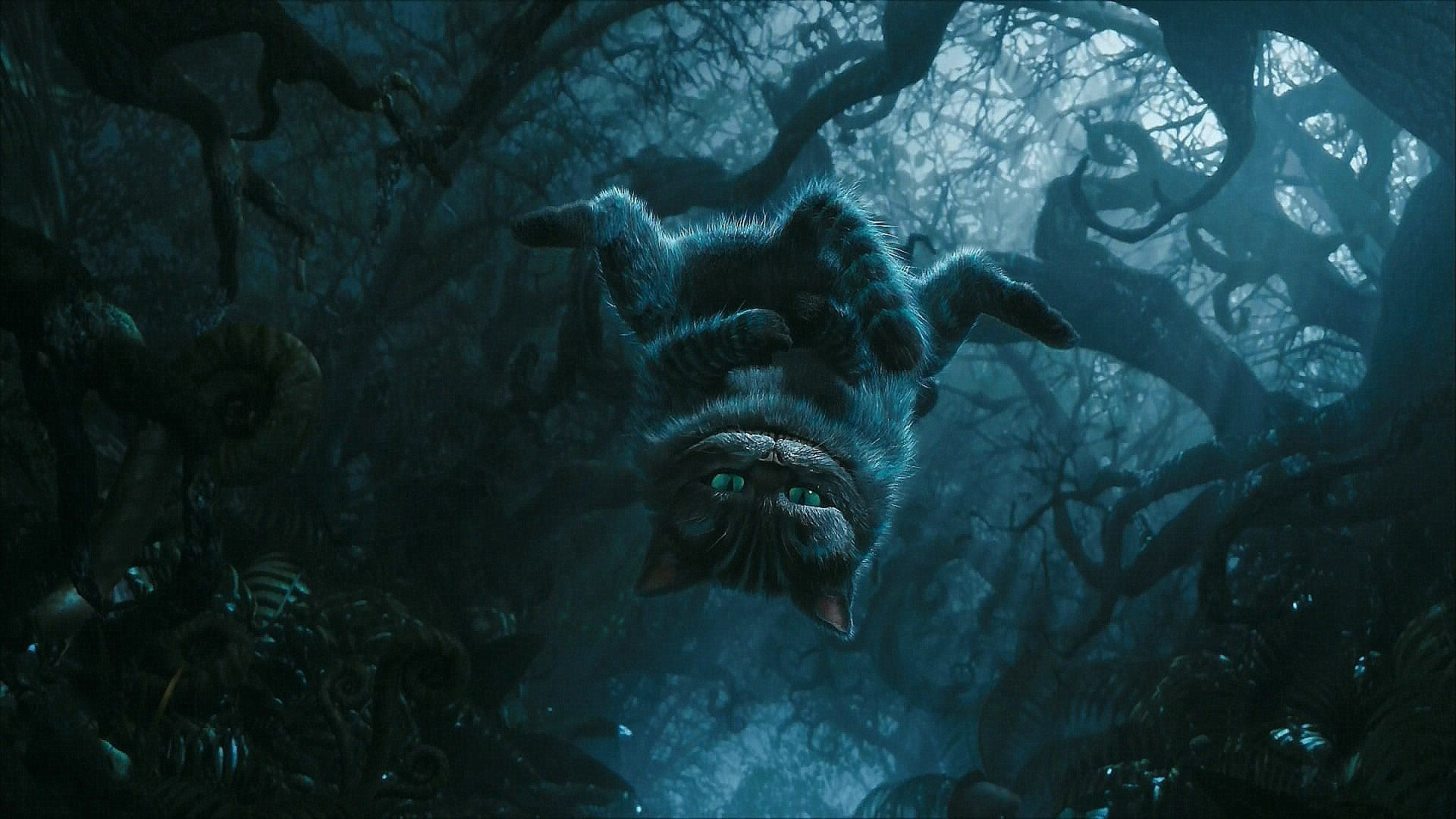 Cheshire Cat Wallpaper Download Free Cool Full Hd Wallpapers For