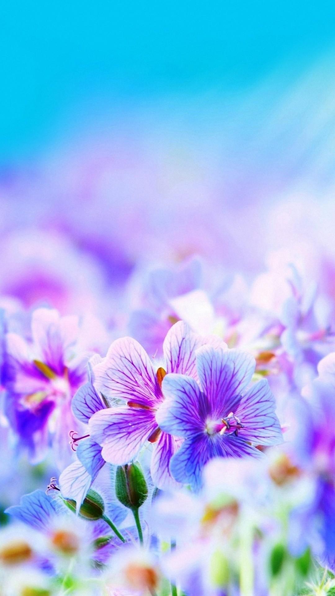 Pretty Purple Wallpaper ·①