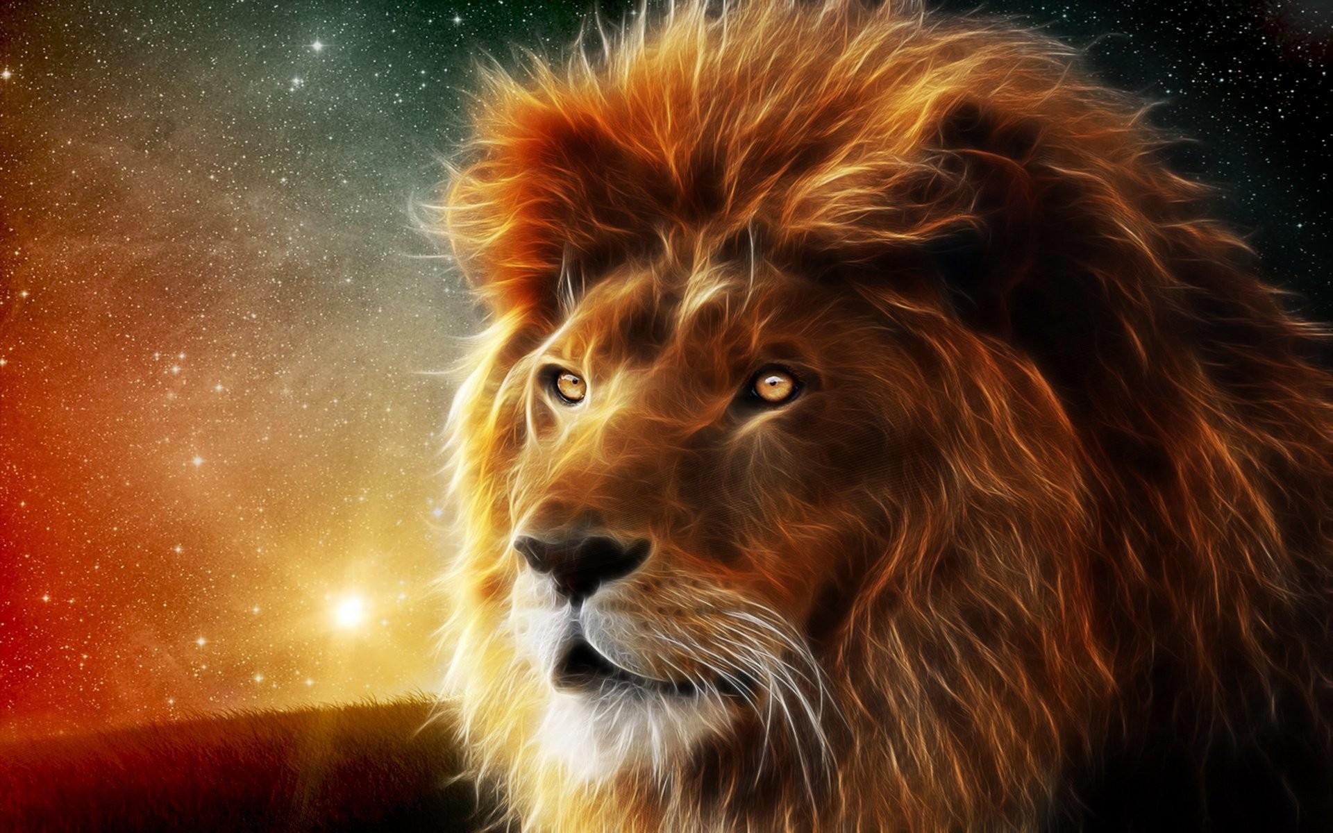 Lion Background Download Free Full Hd Backgrounds For Desktop