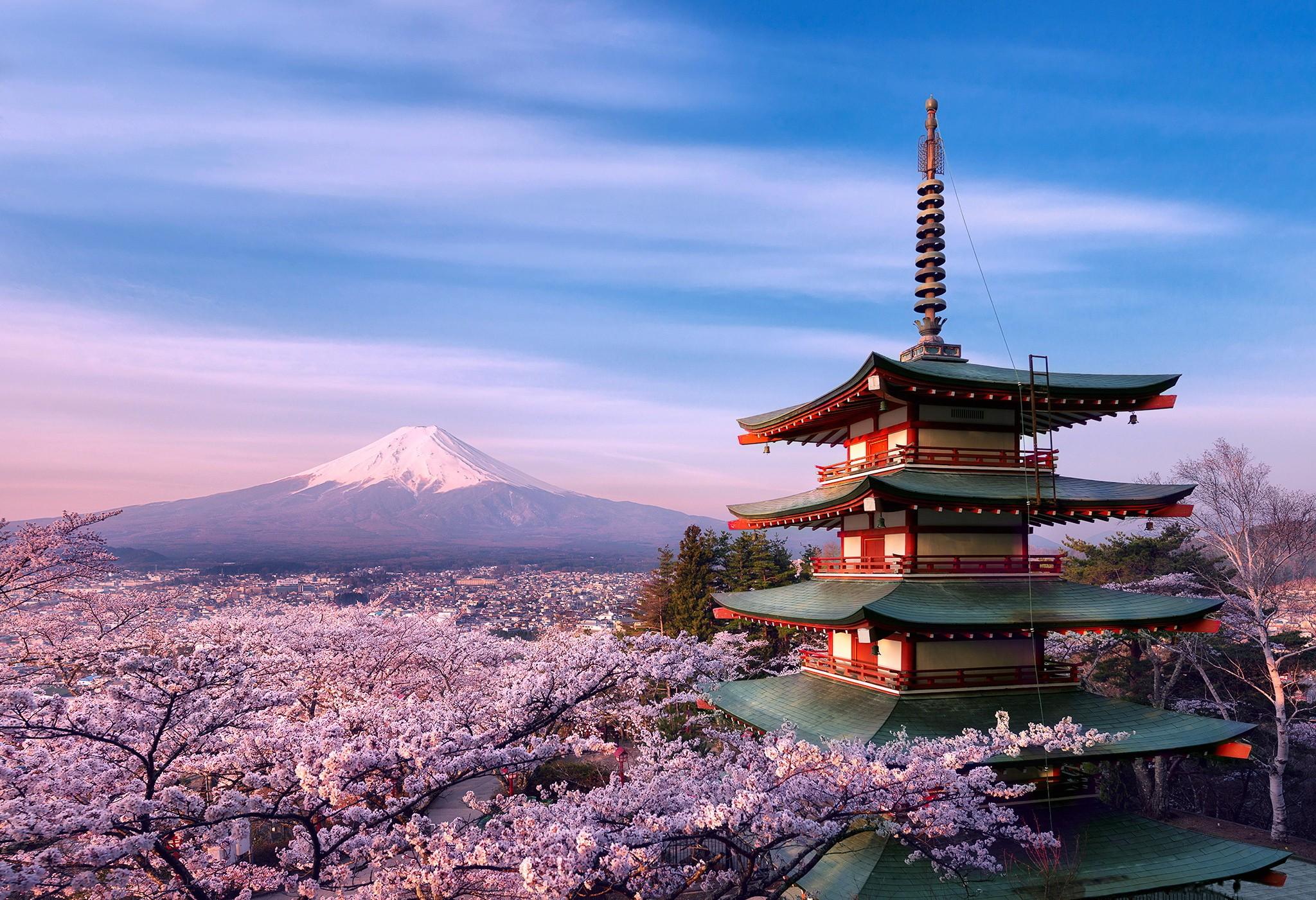 sakura wallpaper 183�� download free stunning wallpapers for
