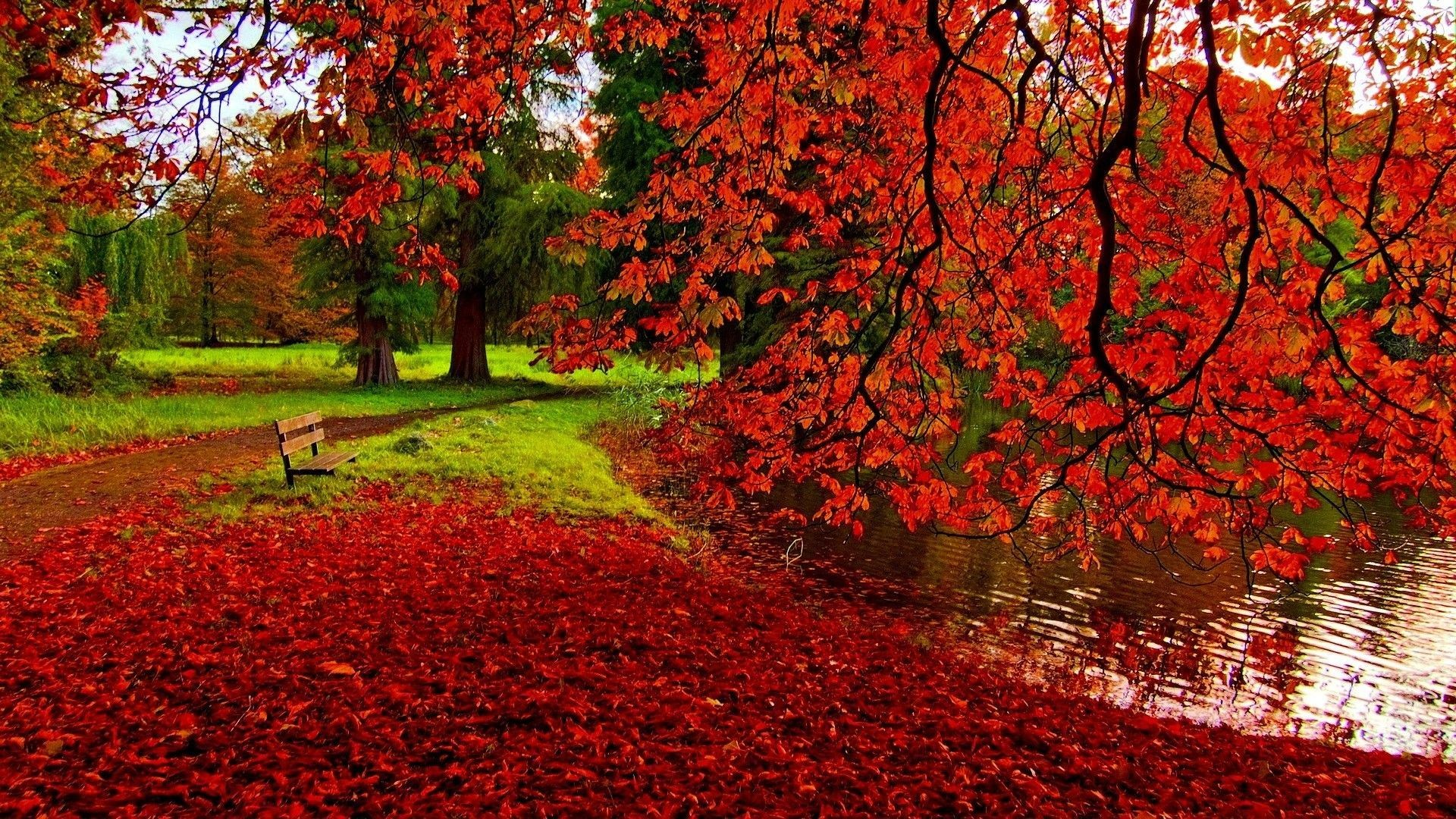 Autumn Pictures For Desktop Backgrounds 1