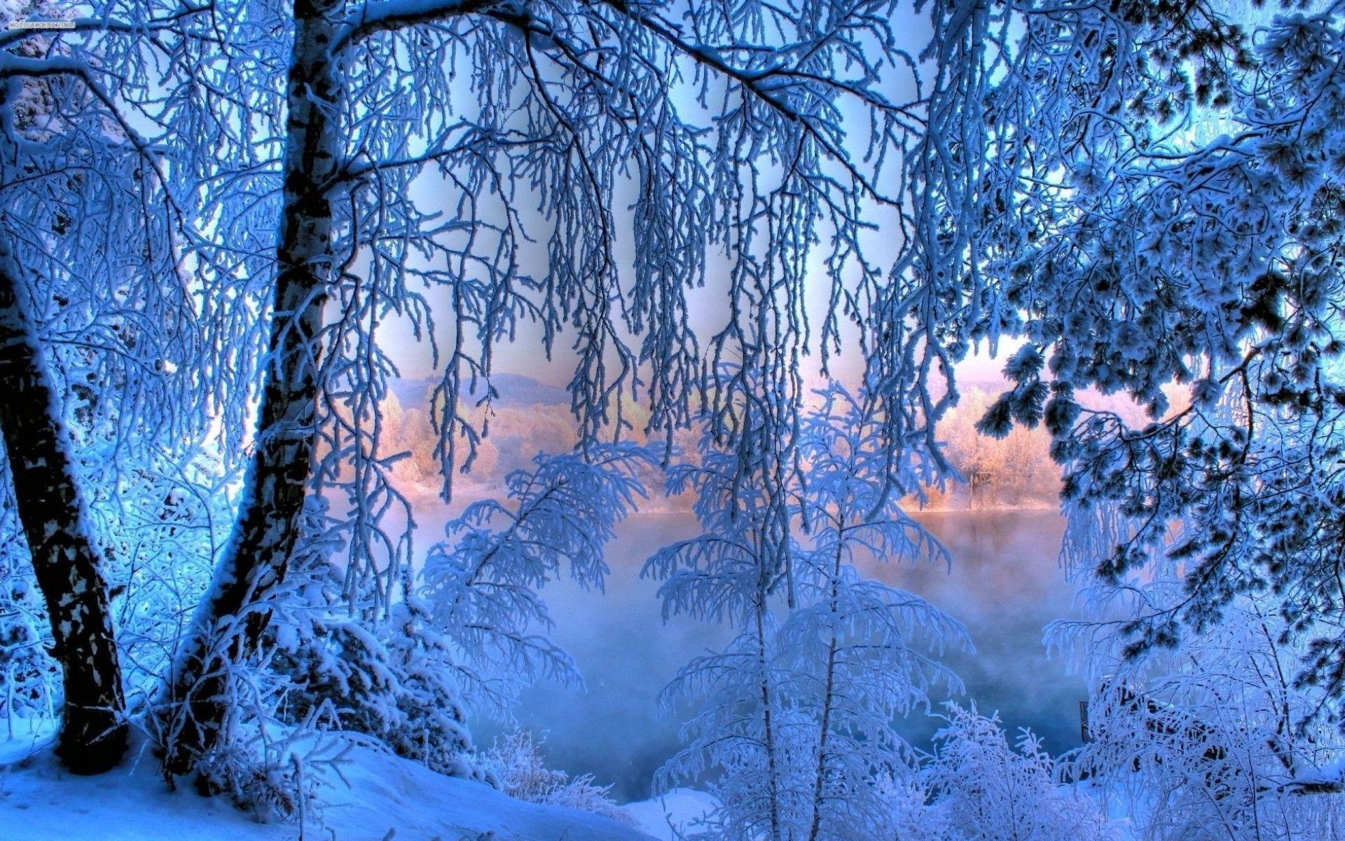 озеро зима иней the lake winter frost  № 580145 загрузить