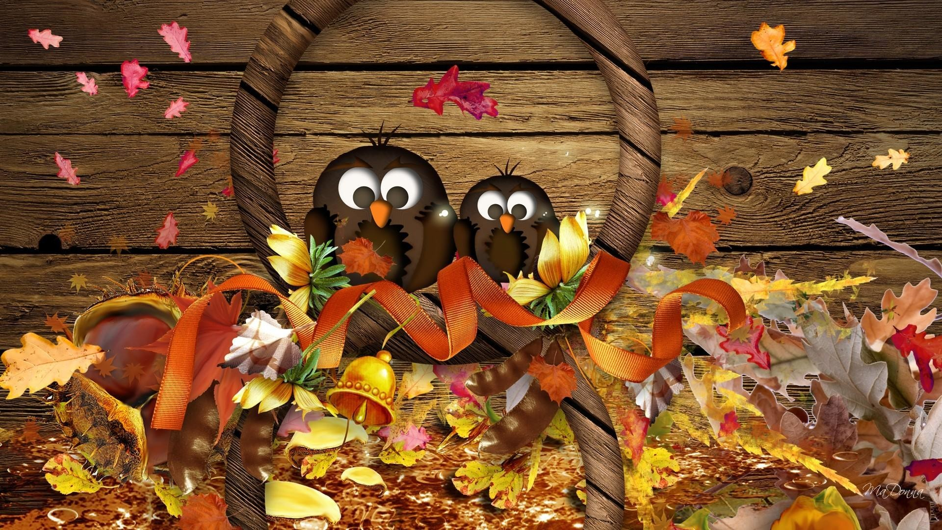 Funny thanksgiving backgrounds - Funniest screensavers ...