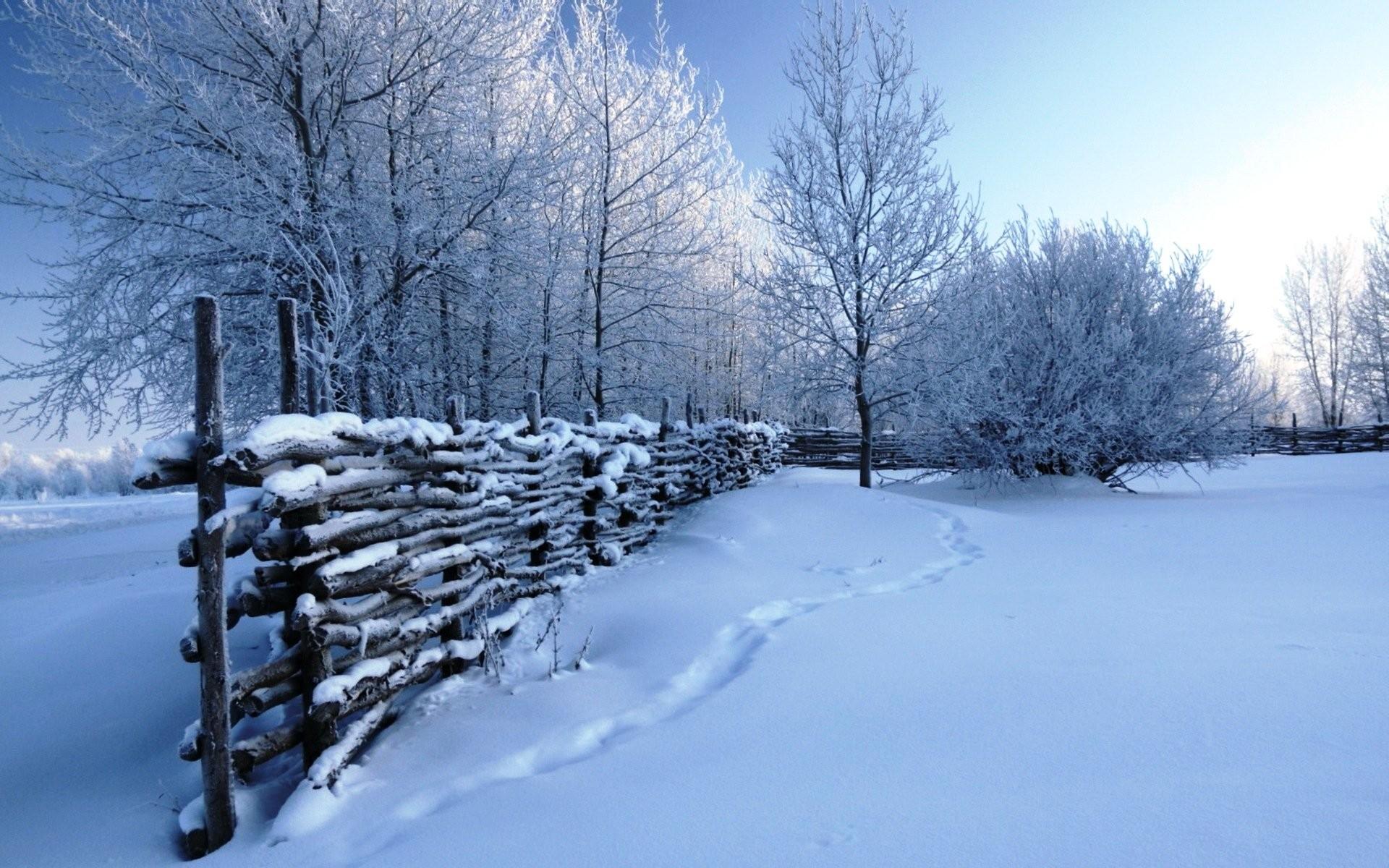 winter snow scenes wallpaper 183��