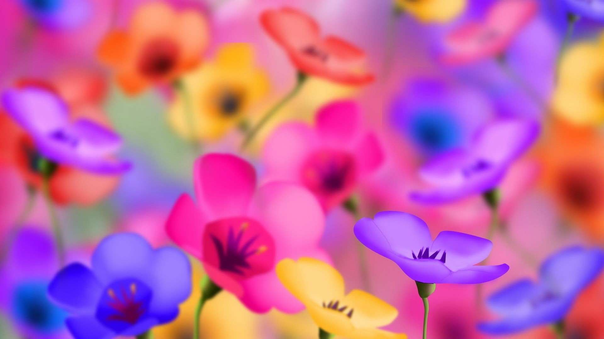 Full Hd Flowers Wallpapers Wallpapertag
