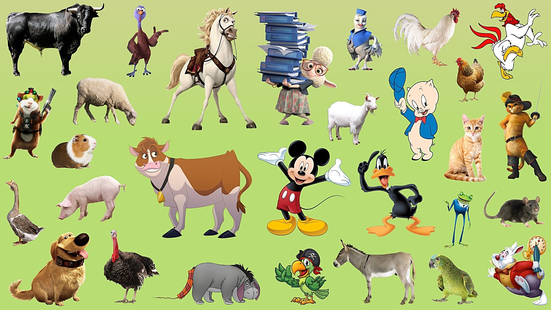 Animal cartoon characters images