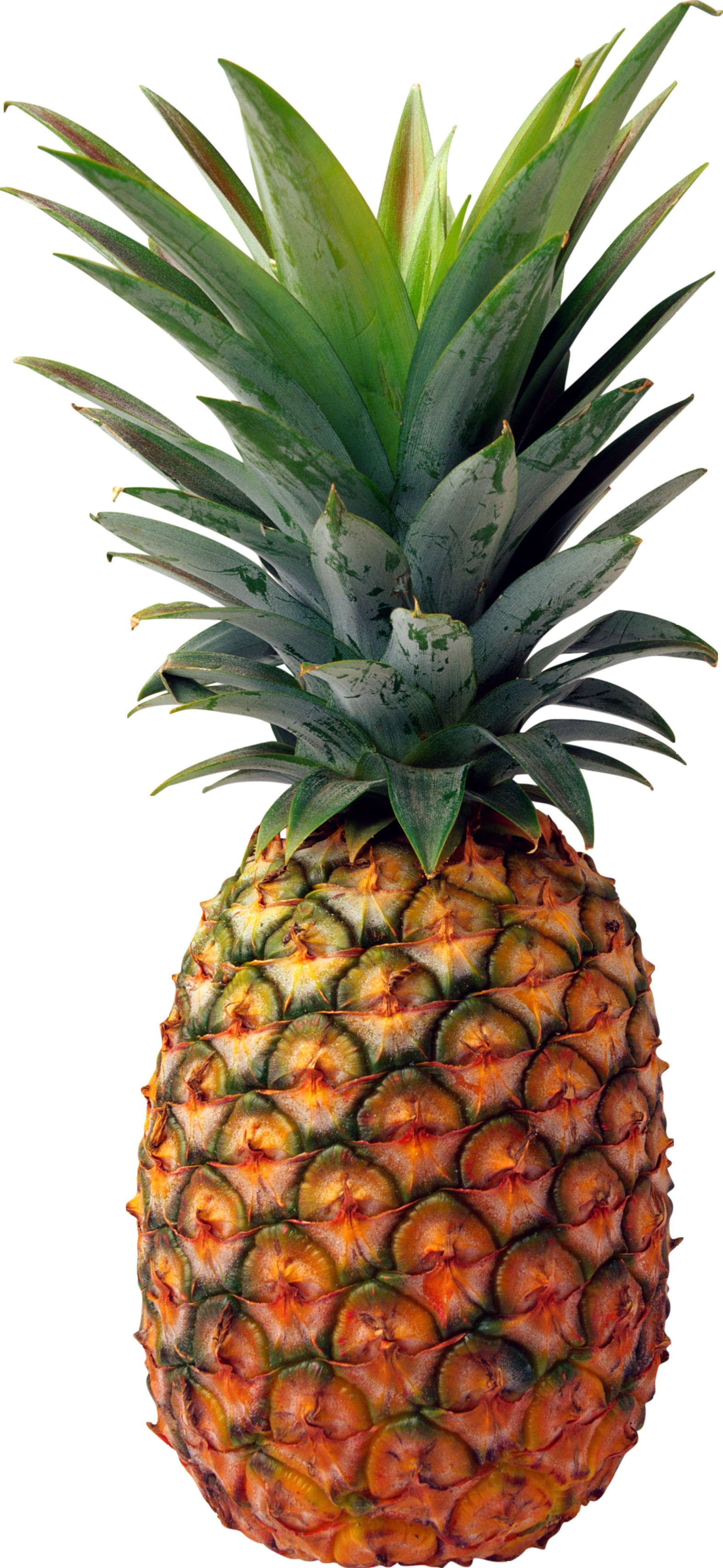 Pineapple background ·① Download free stunning HD ...