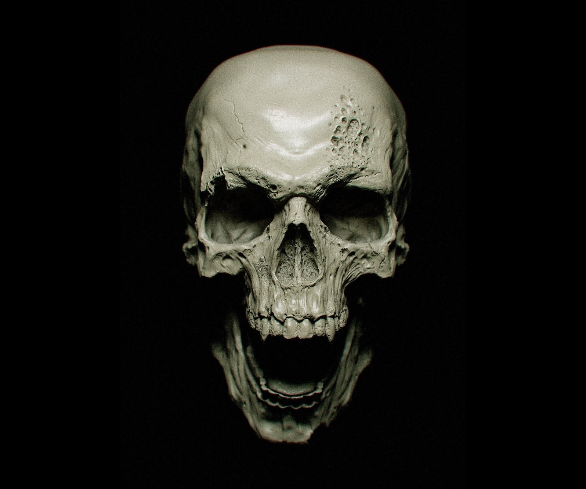 Skull Black Background ·① WallpaperTag