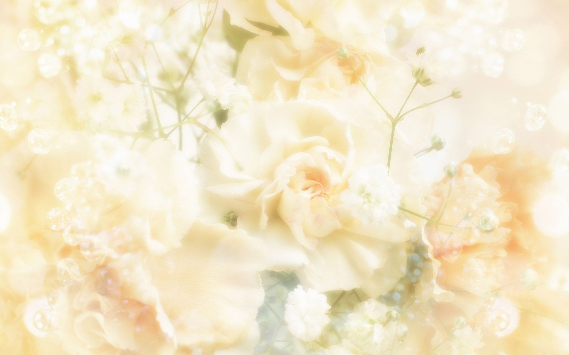 Wedding Background Images 183 ① Download Free Beautiful Hd