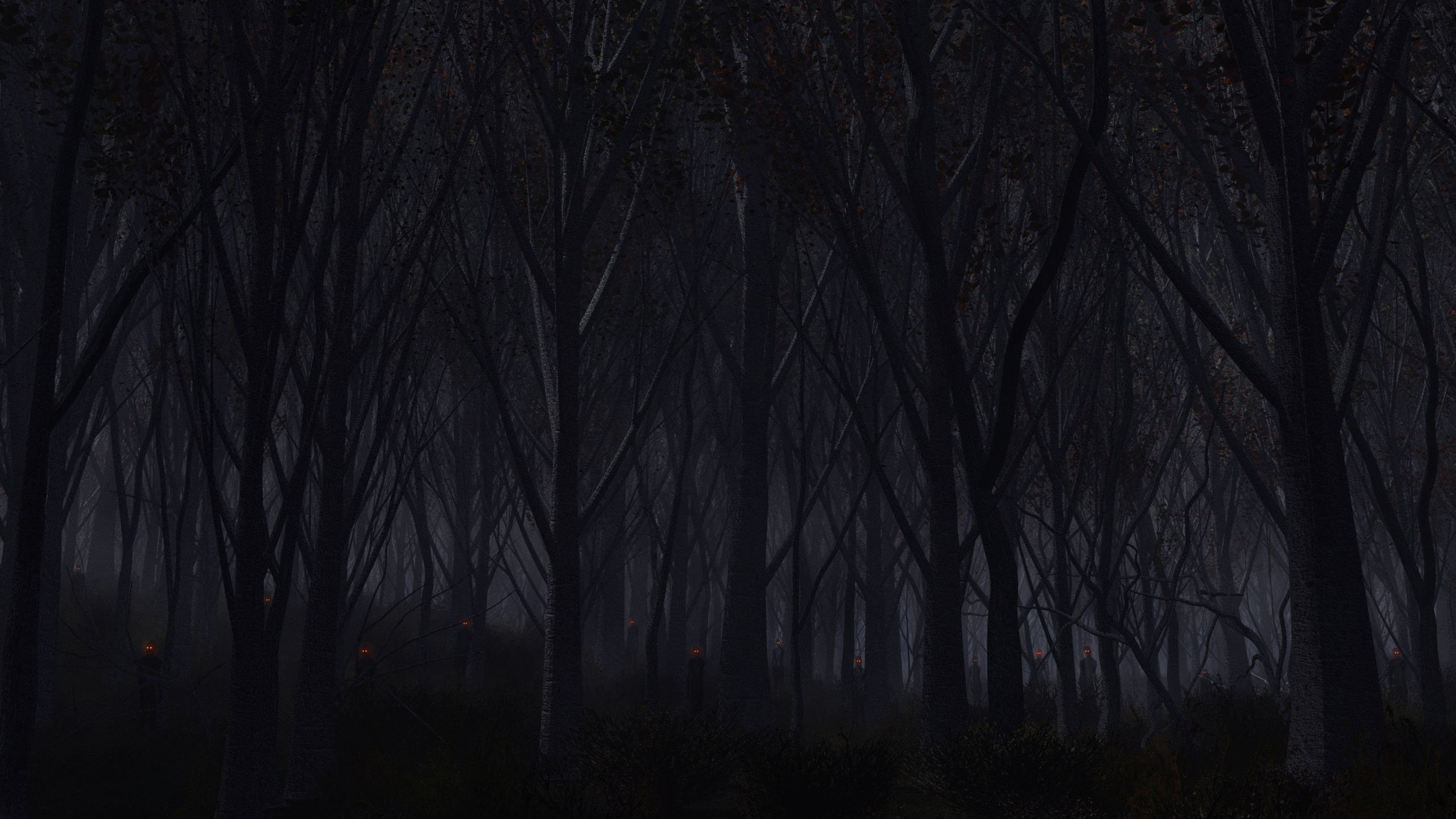 Dark Forest Wallpapers Wallpapertag
