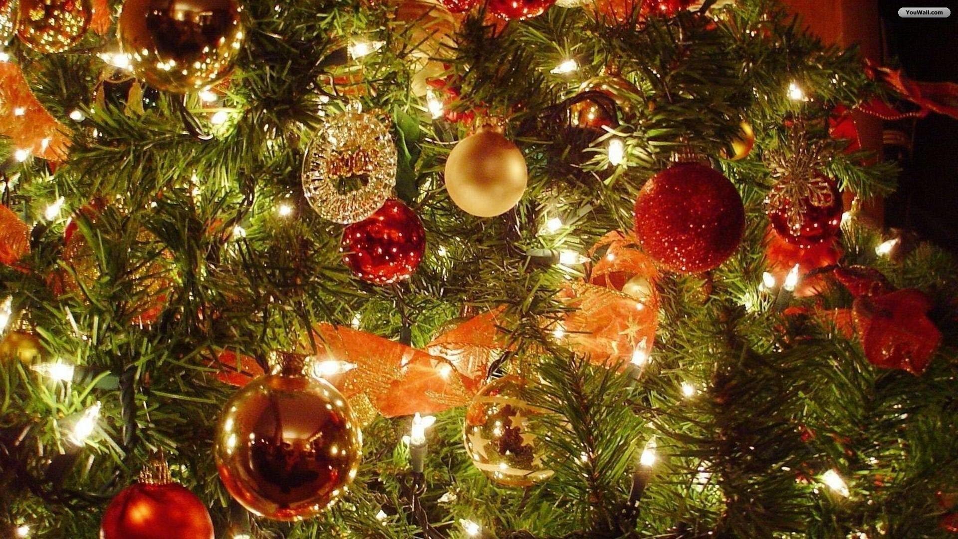 Christmas Tree Desktop Background 1