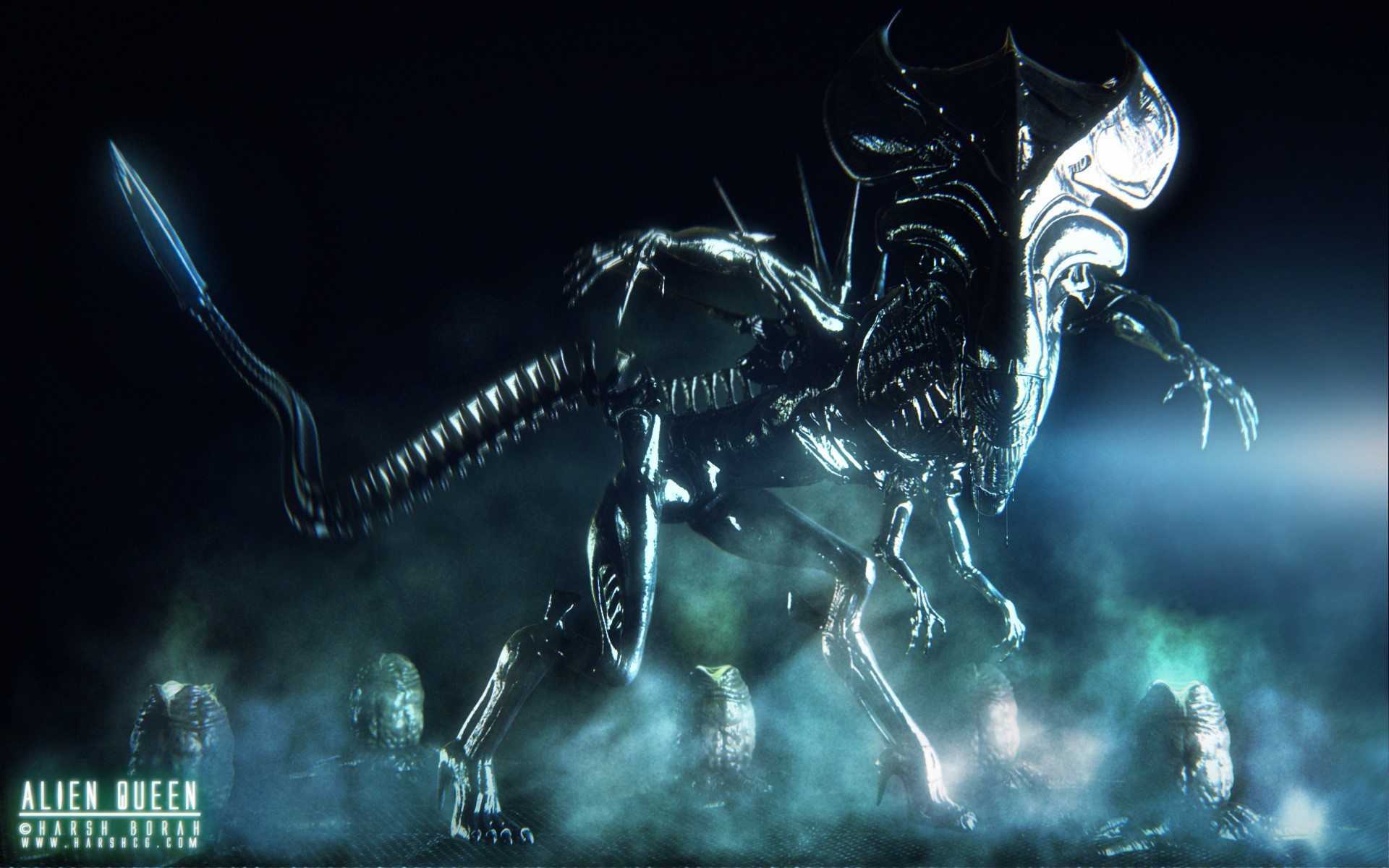 Xenomorph Wallpaper Download Free Stunning Hd Backgrounds For
